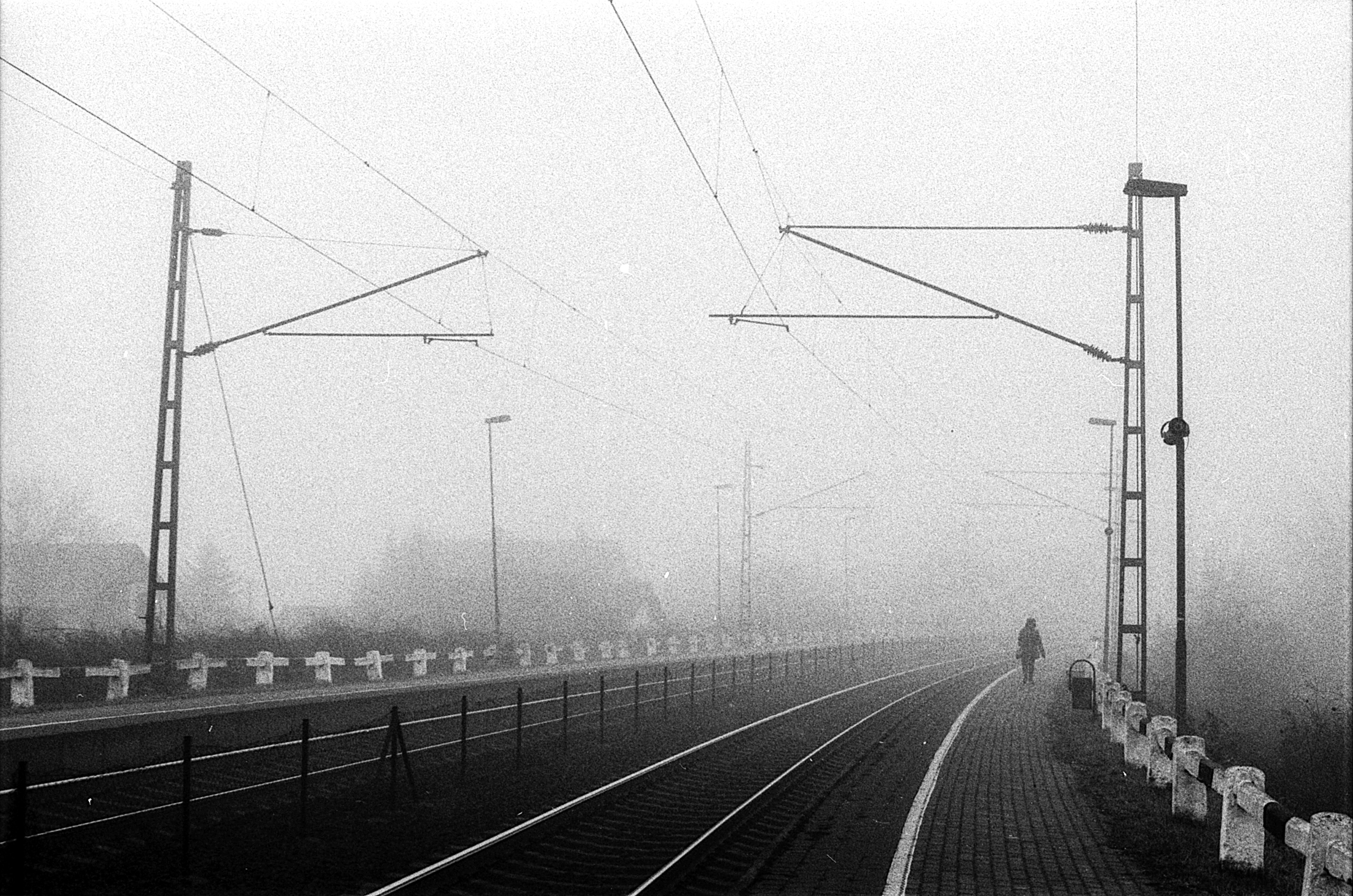 Walk in the fog, 1.4, Blackandwhite, Cable, Film, HQ Photo