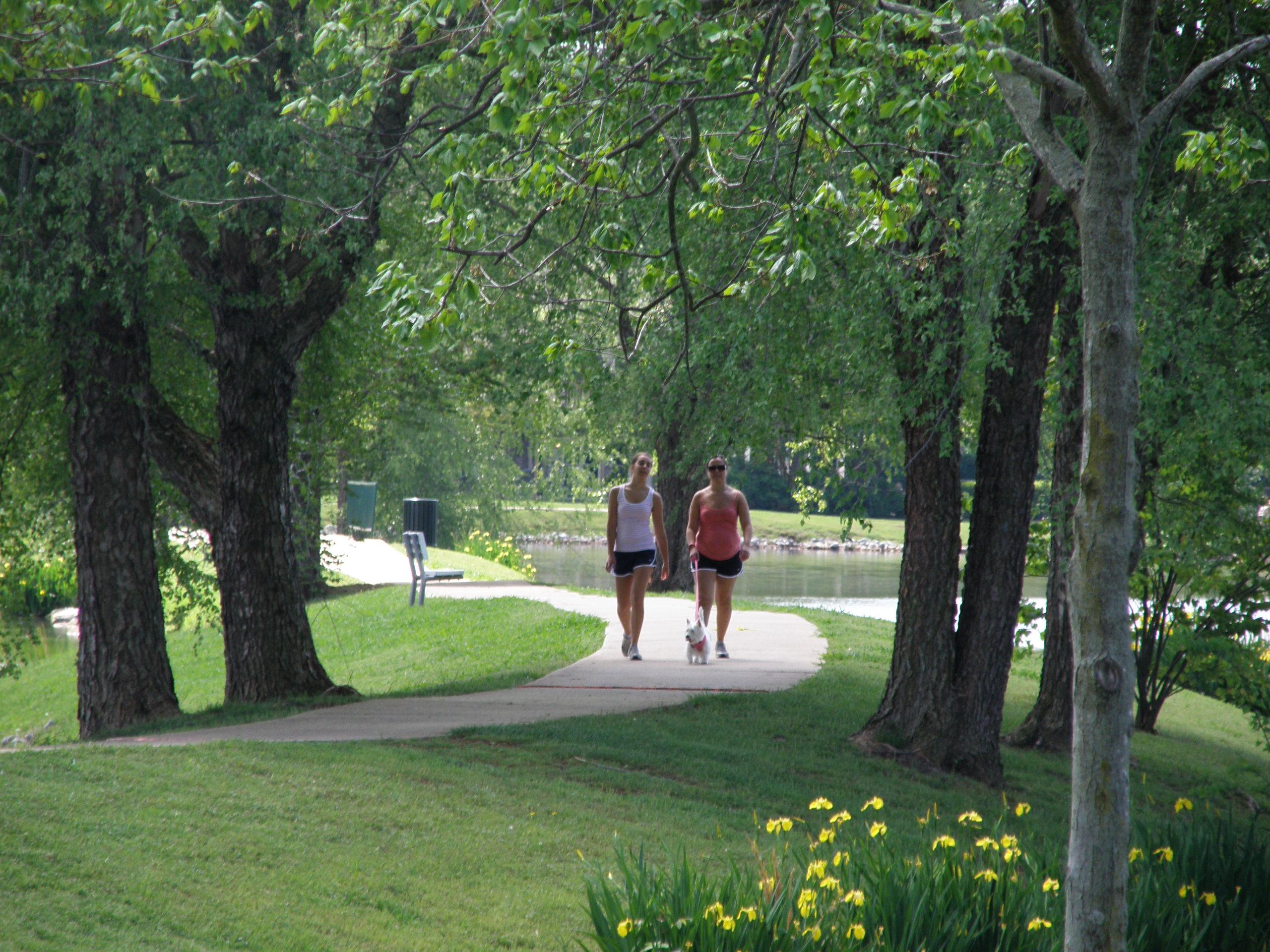Walking path photo