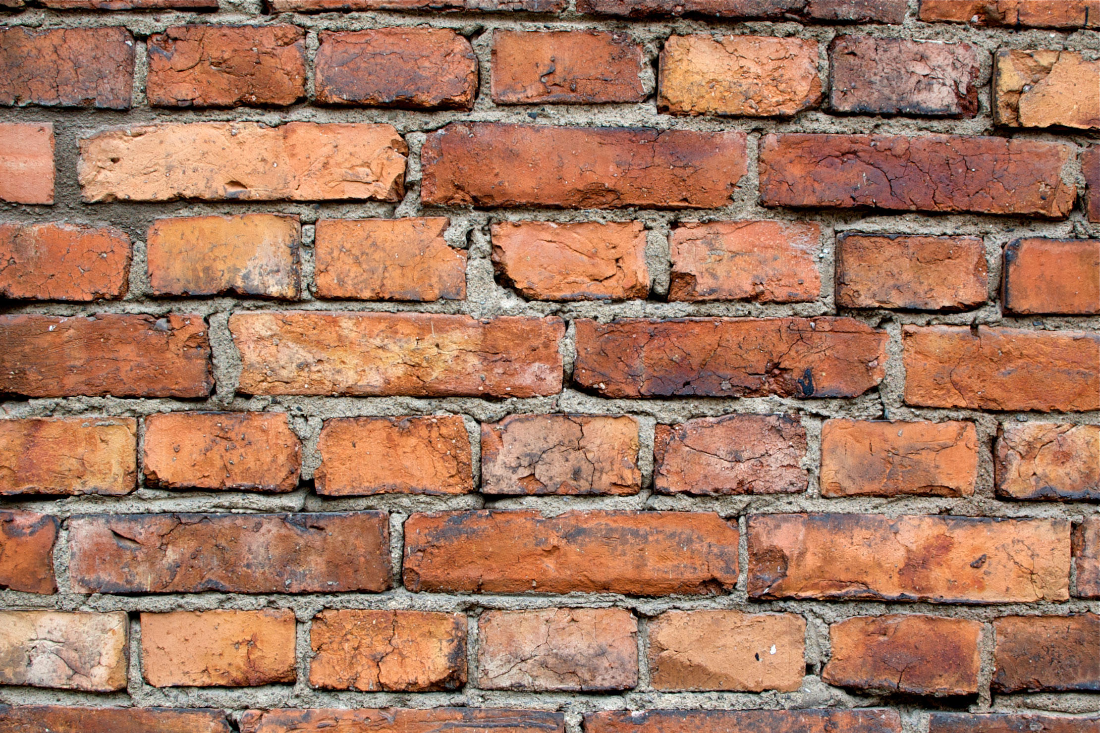 Party Walls: expert view - Brady Solicitors