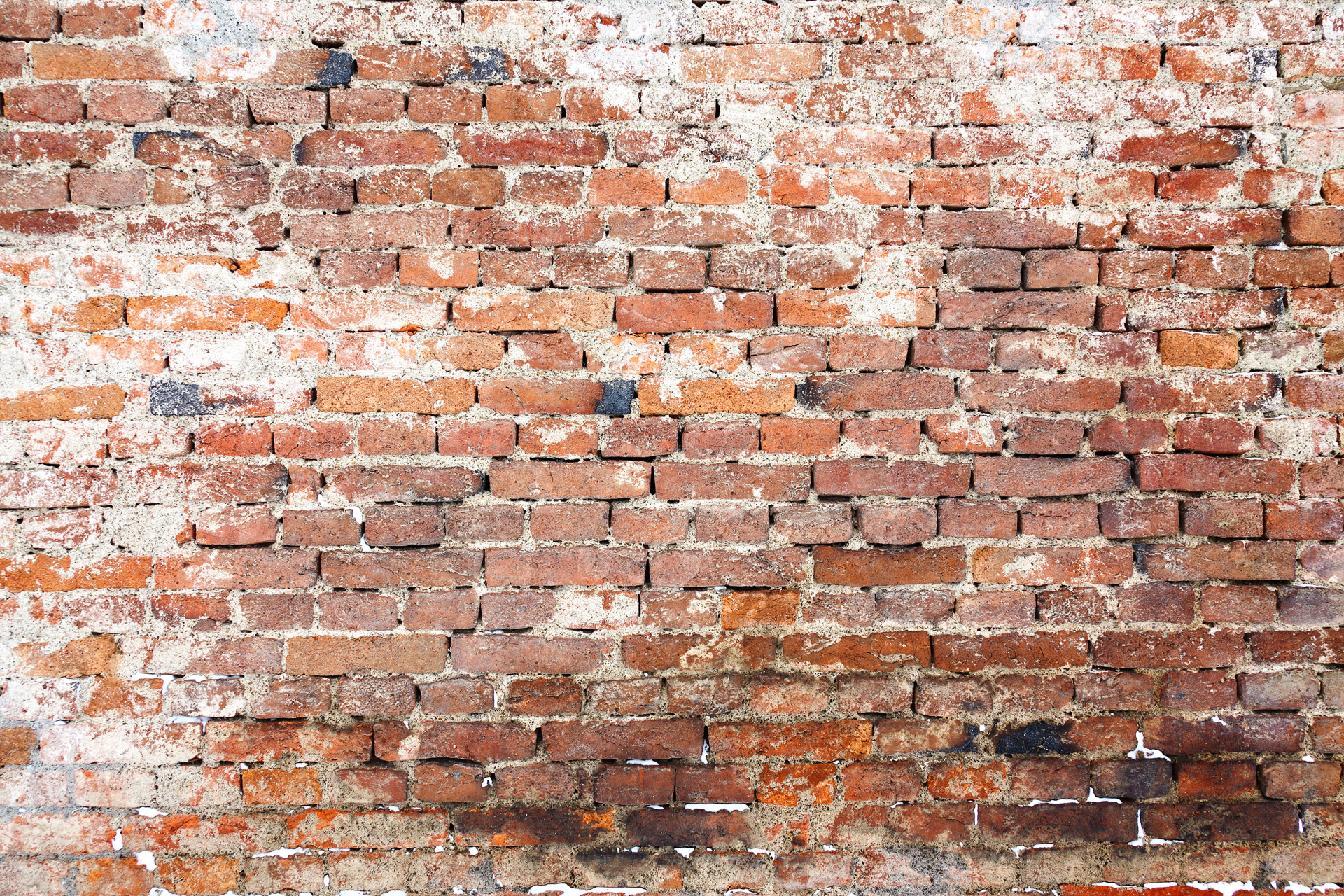 Old Brick Wall Free Stock Photo - Public Domain Pictures