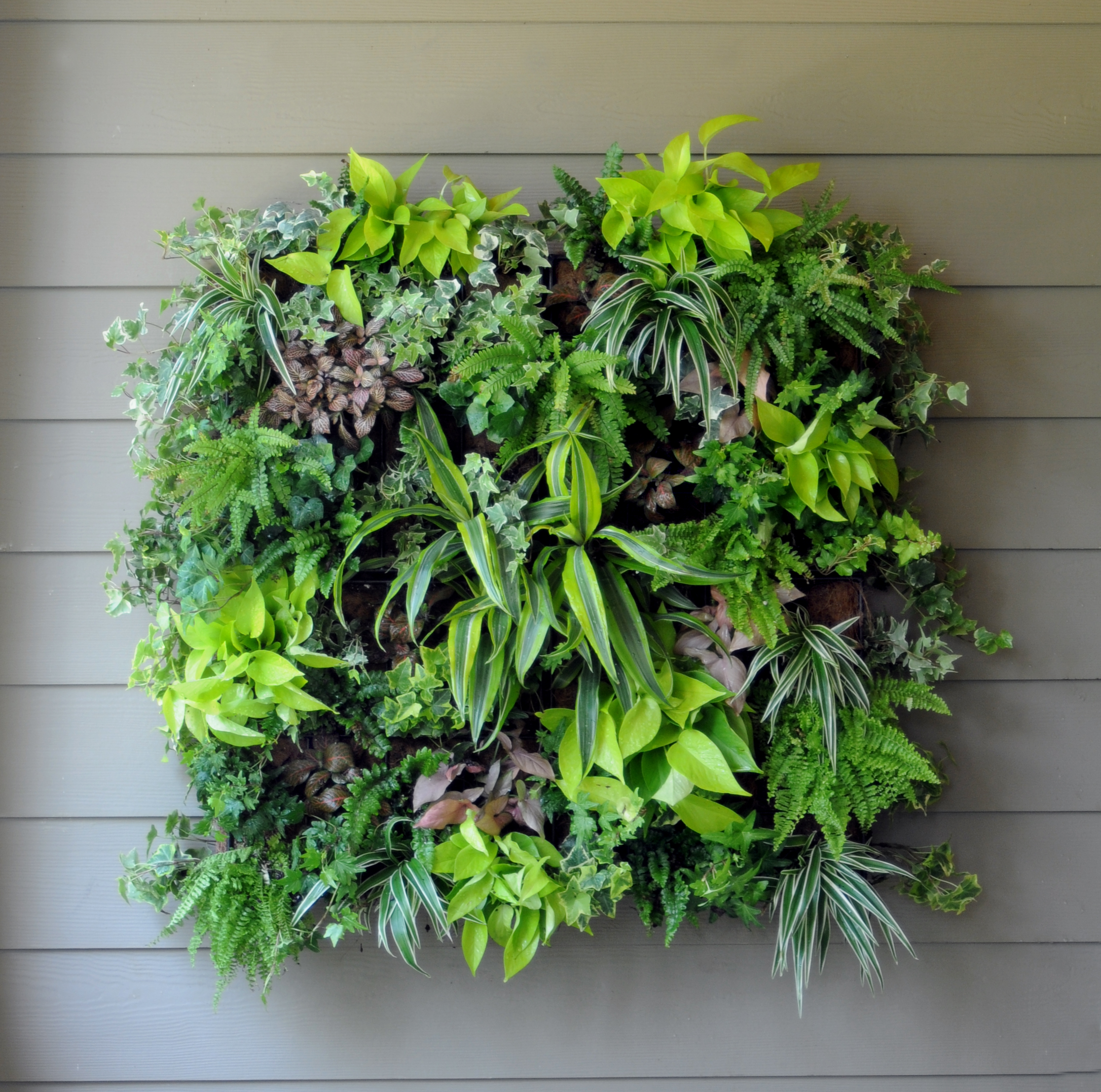 Living Wall Planters - Pamela Crawford Living Wall Planter w/ Liner