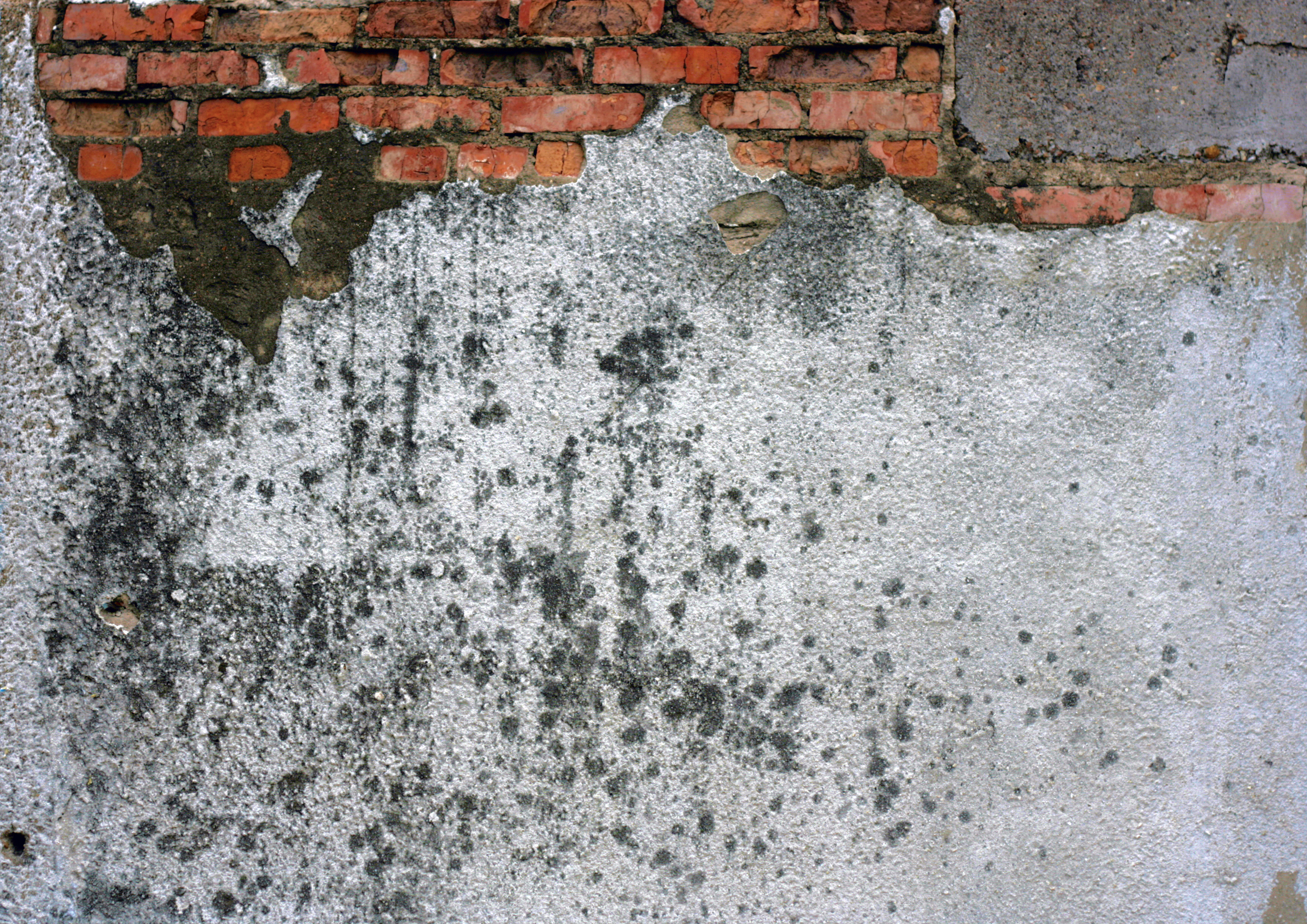 Wall Texture, Close-up, Concrete, Dirty, Exterior, HQ Photo