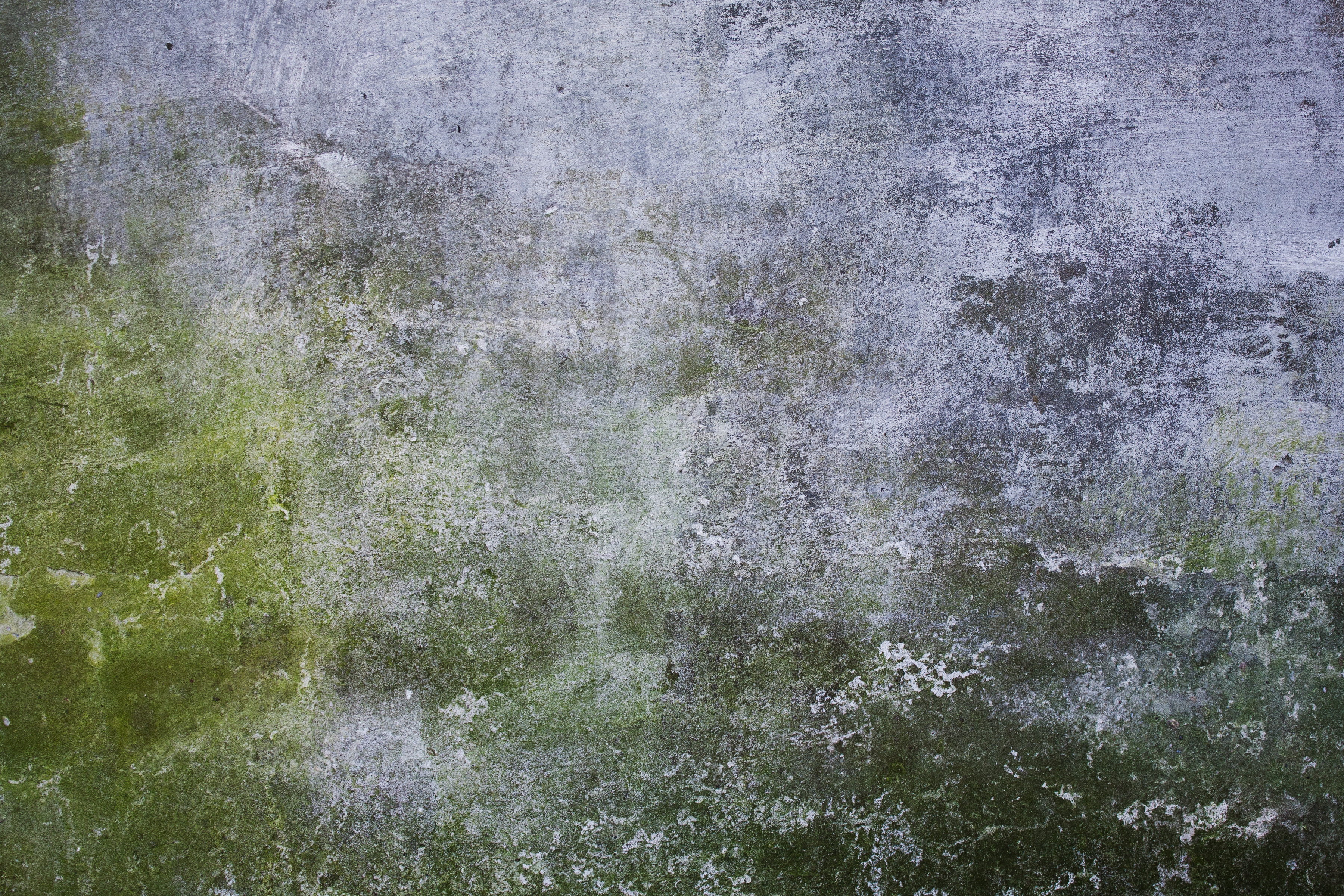 Old Mossy Concrete Wall Texture