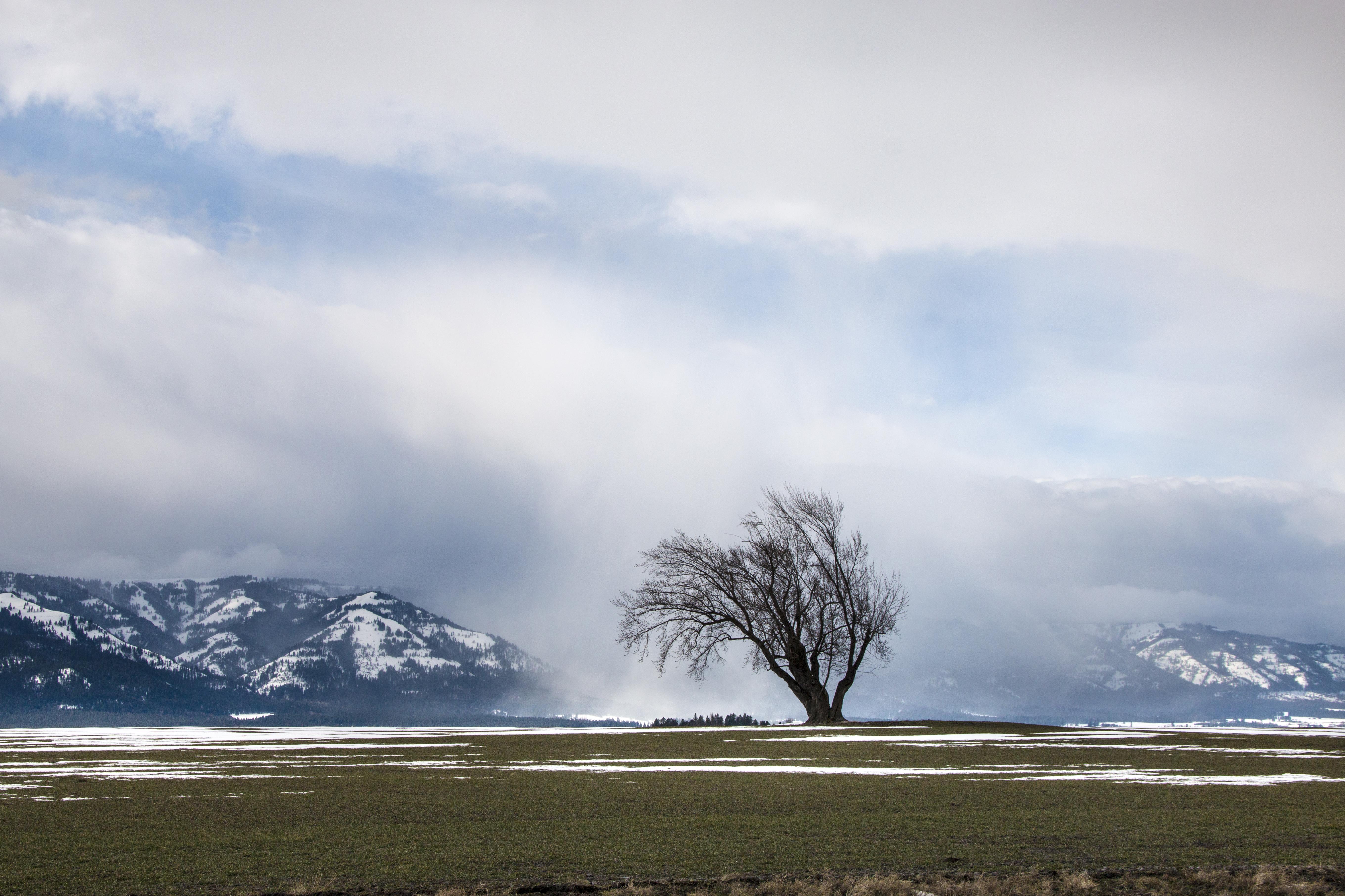 Wallowa mountains, snowing photo