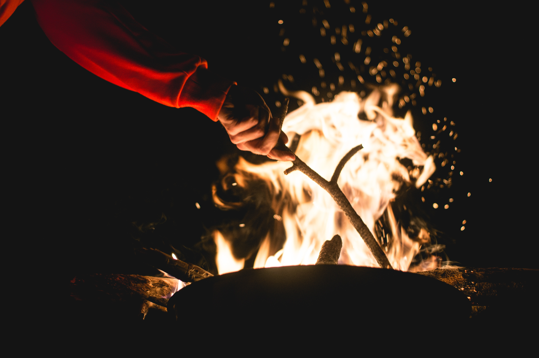 Warm, survival bushcraft: guidebook: tips and skills for beginners (bushcraft, survival)