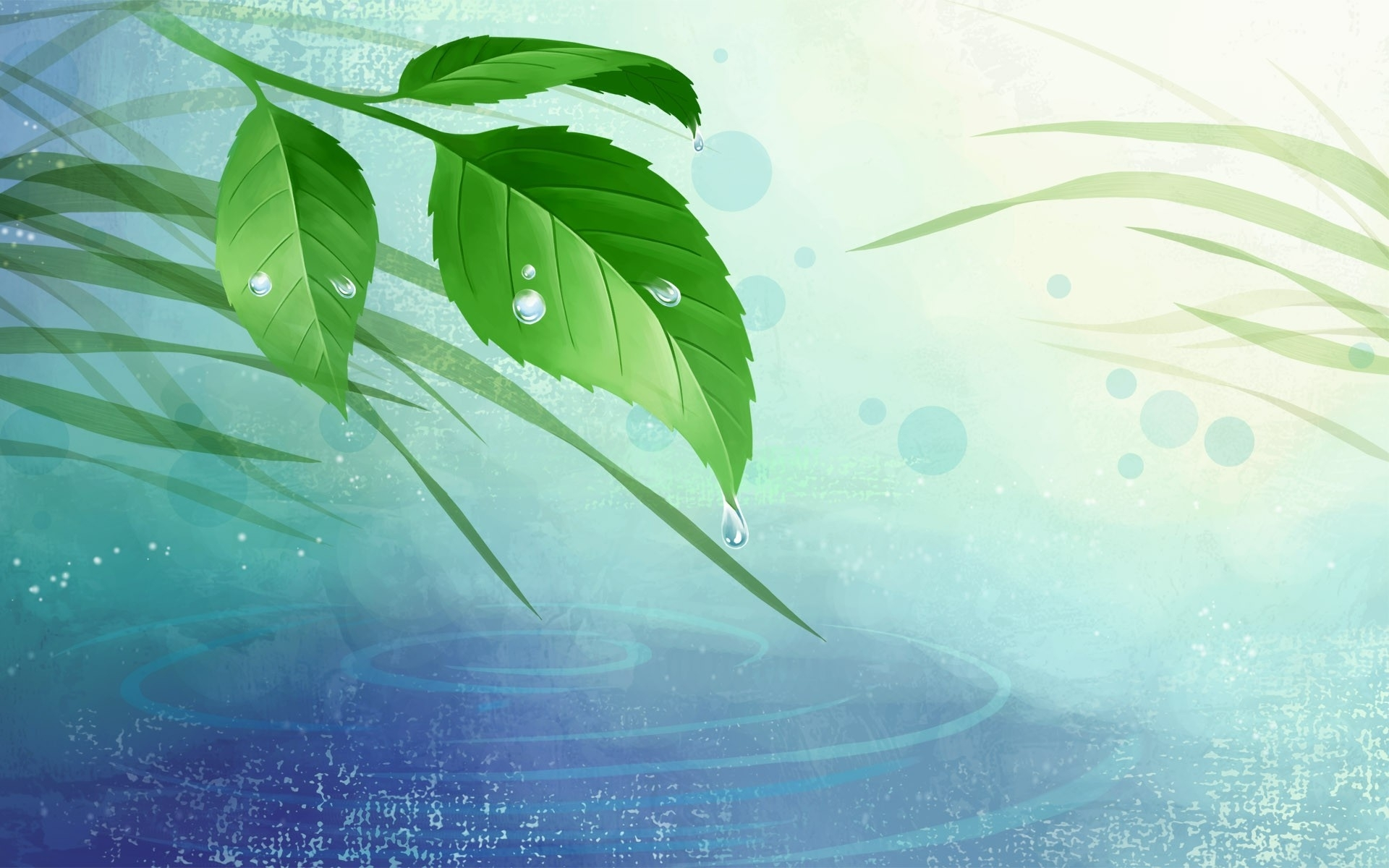 Abstract Leaves & Water wallpapers | Abstract Leaves & Water stock ...