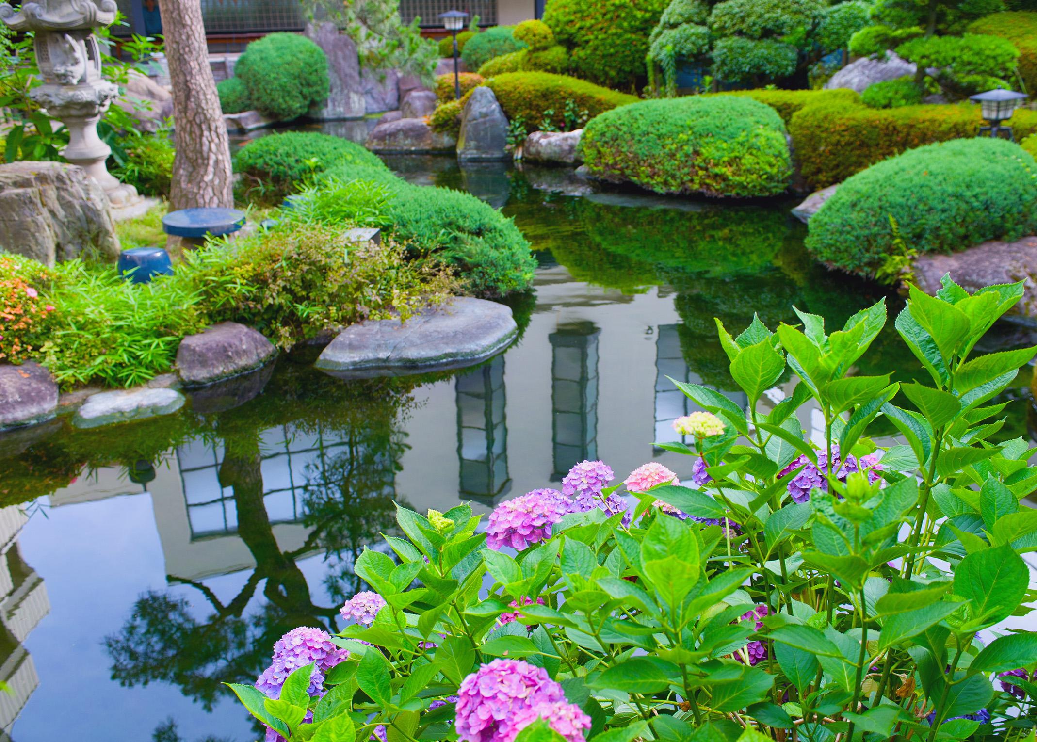 Water Garden Pond - DMA Homes | #51440