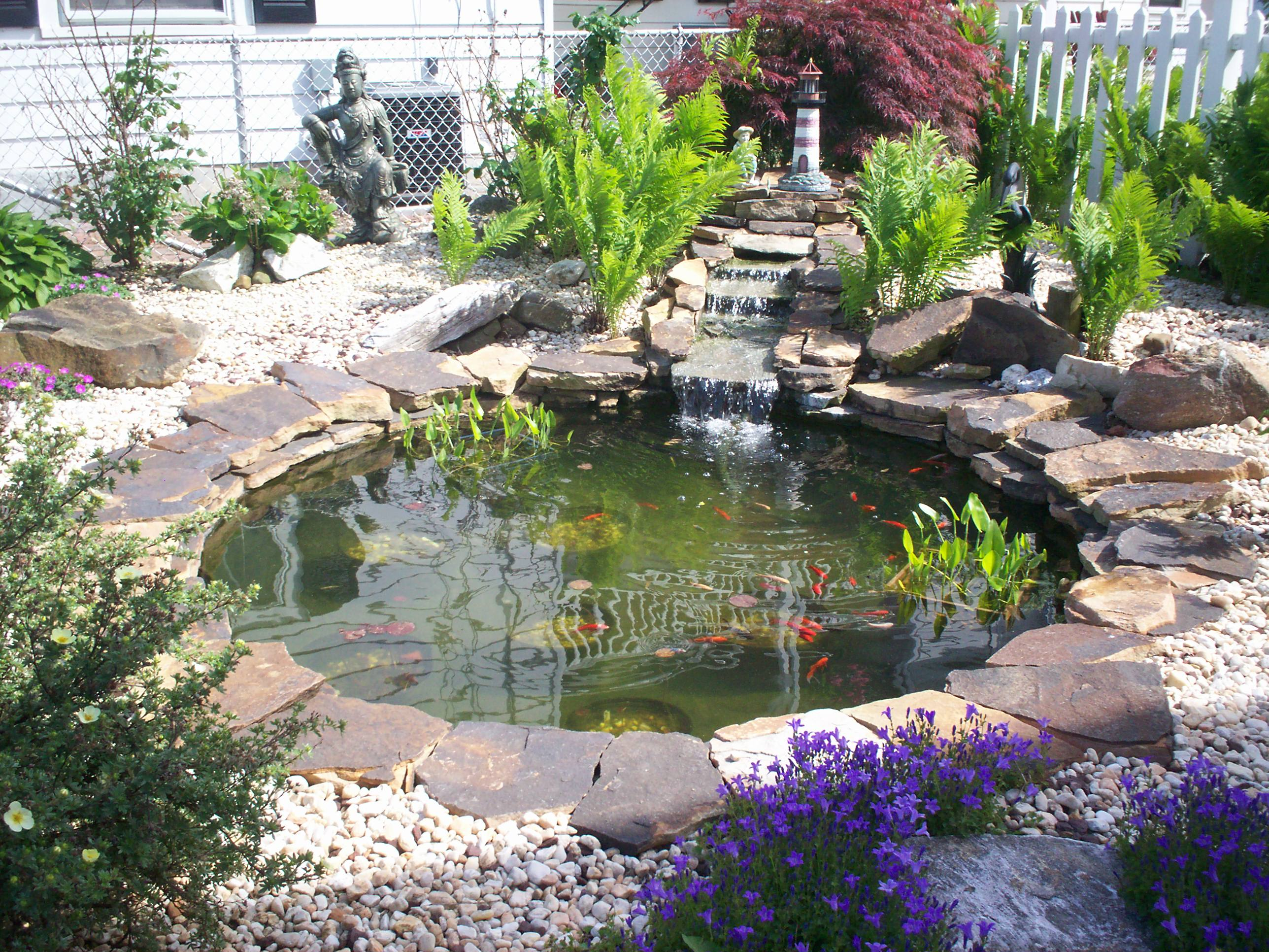 Water Garden - DMA Homes | #51451