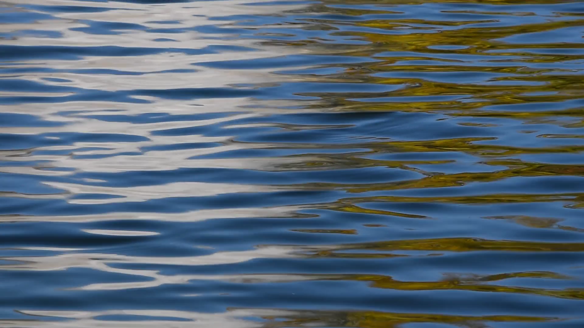 Colorful yellow and blue ripples and waves running on water surface ...