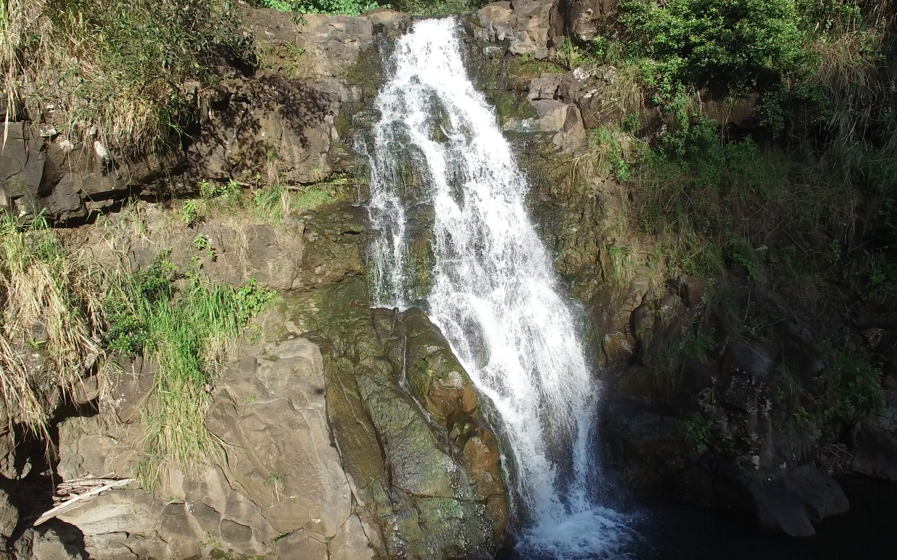 3 - Ultimate Circle Island With Waimea Waterfall - Oahu Nature Tours