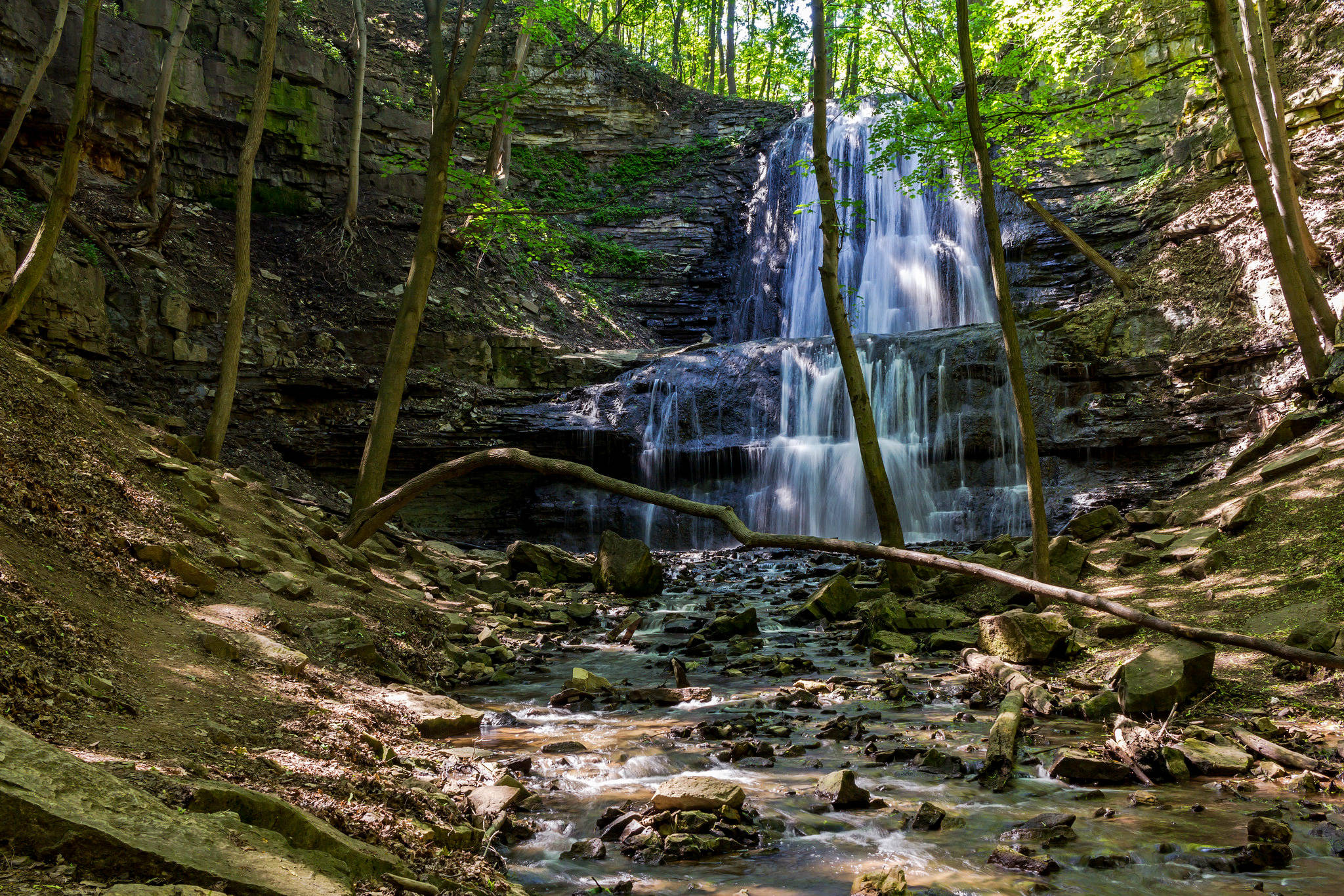 The top 5 waterfalls to visit in Hamilton