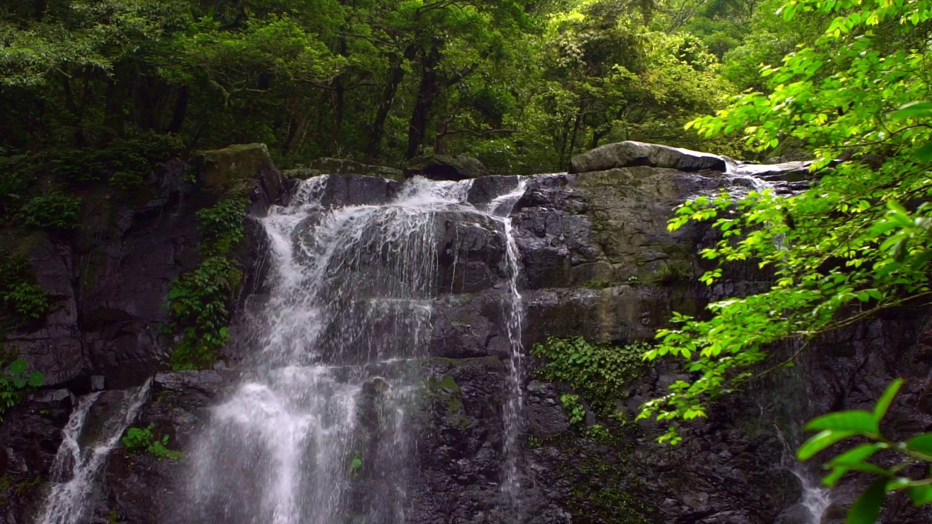 Slow motion natural beauty Virgen waterfall, view of nature ...