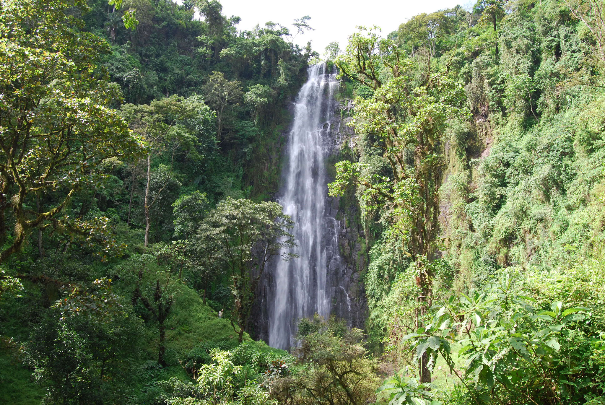 Materuni Waterfall & Coffee Tour with overnight stay - Twanga ...