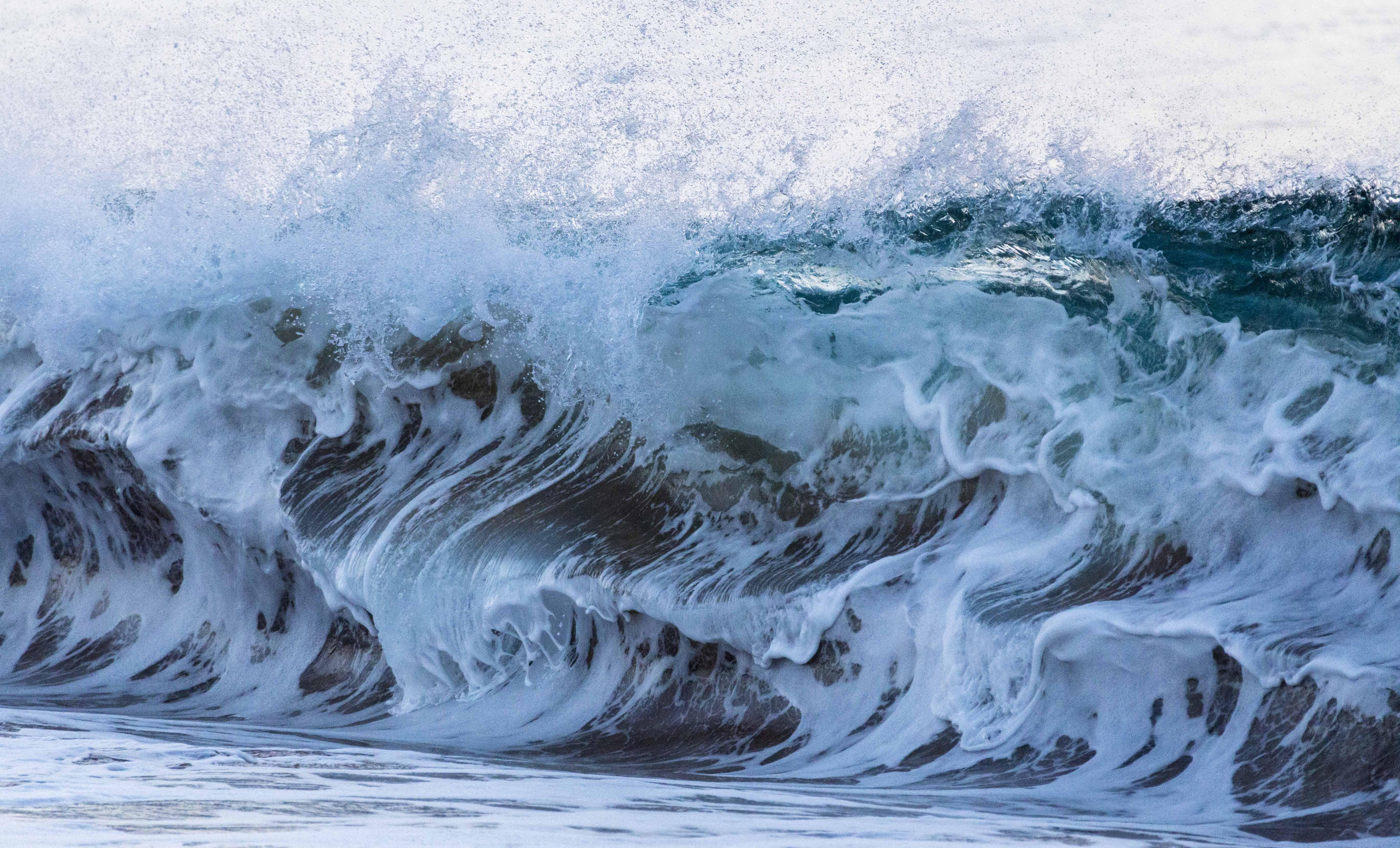 Wild wave photo