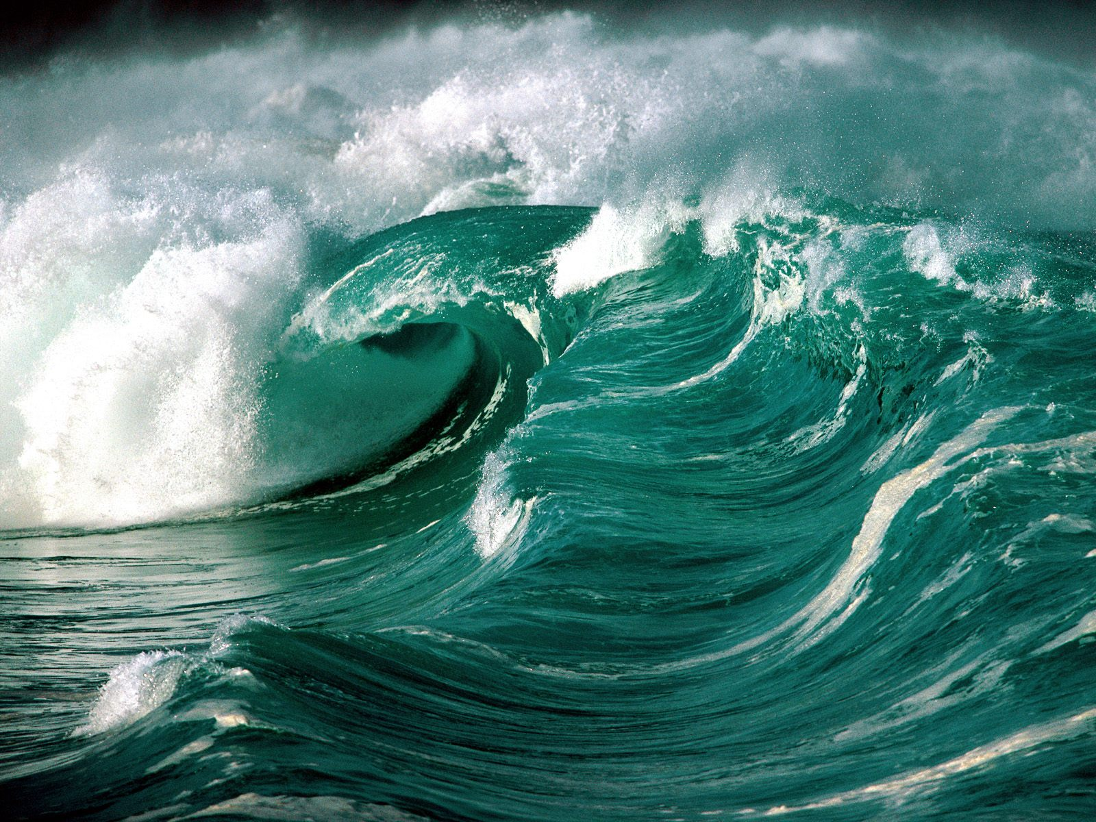 Waves 14544 - Beach photo - Landscape scenery