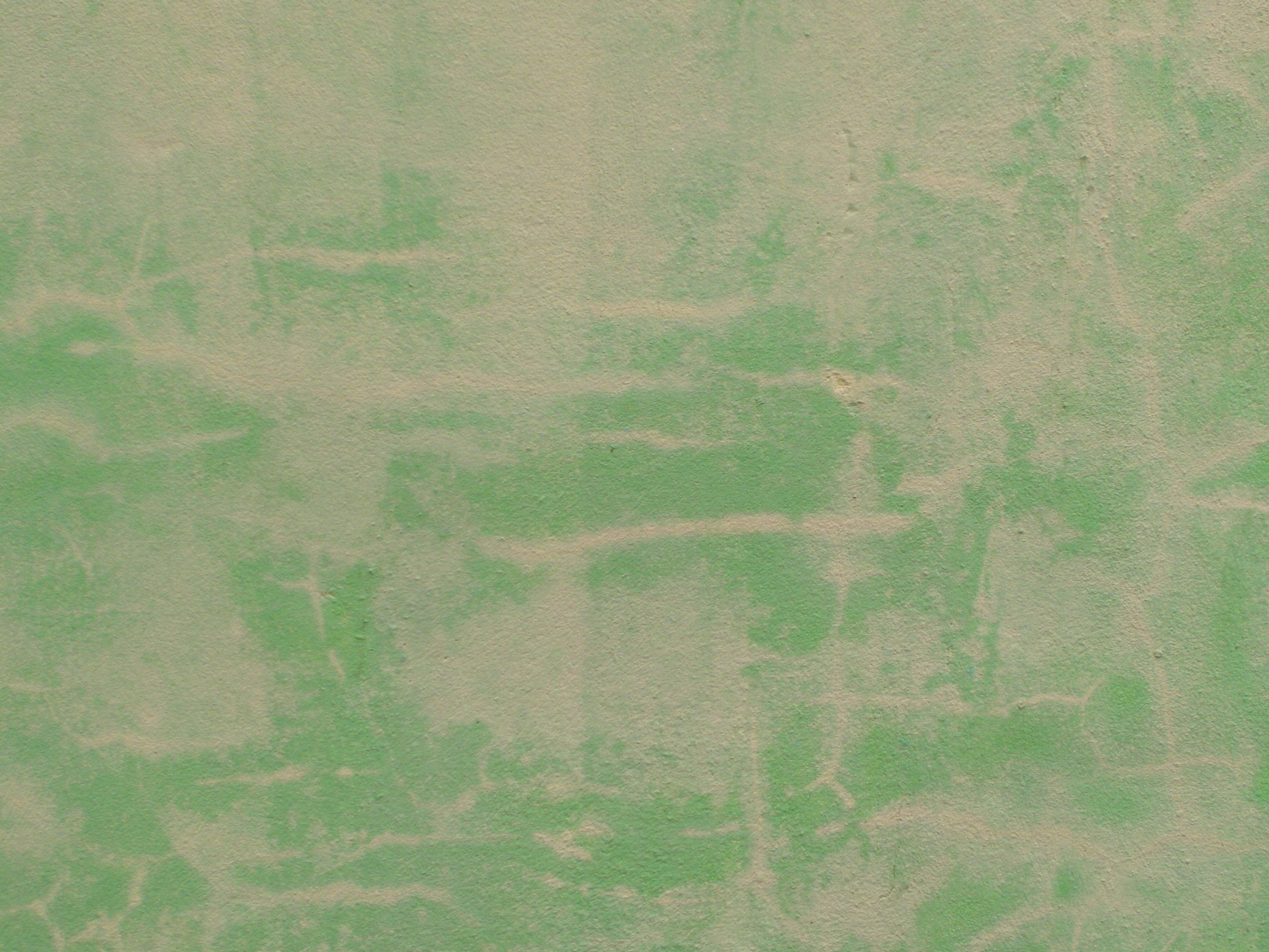 Weathered green grunge background photo