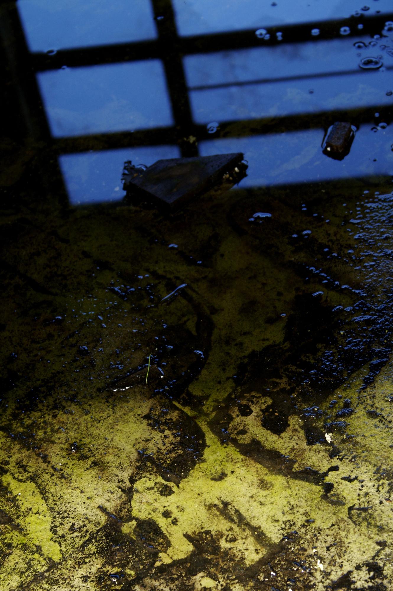 Wet floor, Blue, Bspo06, Floor, Green, HQ Photo