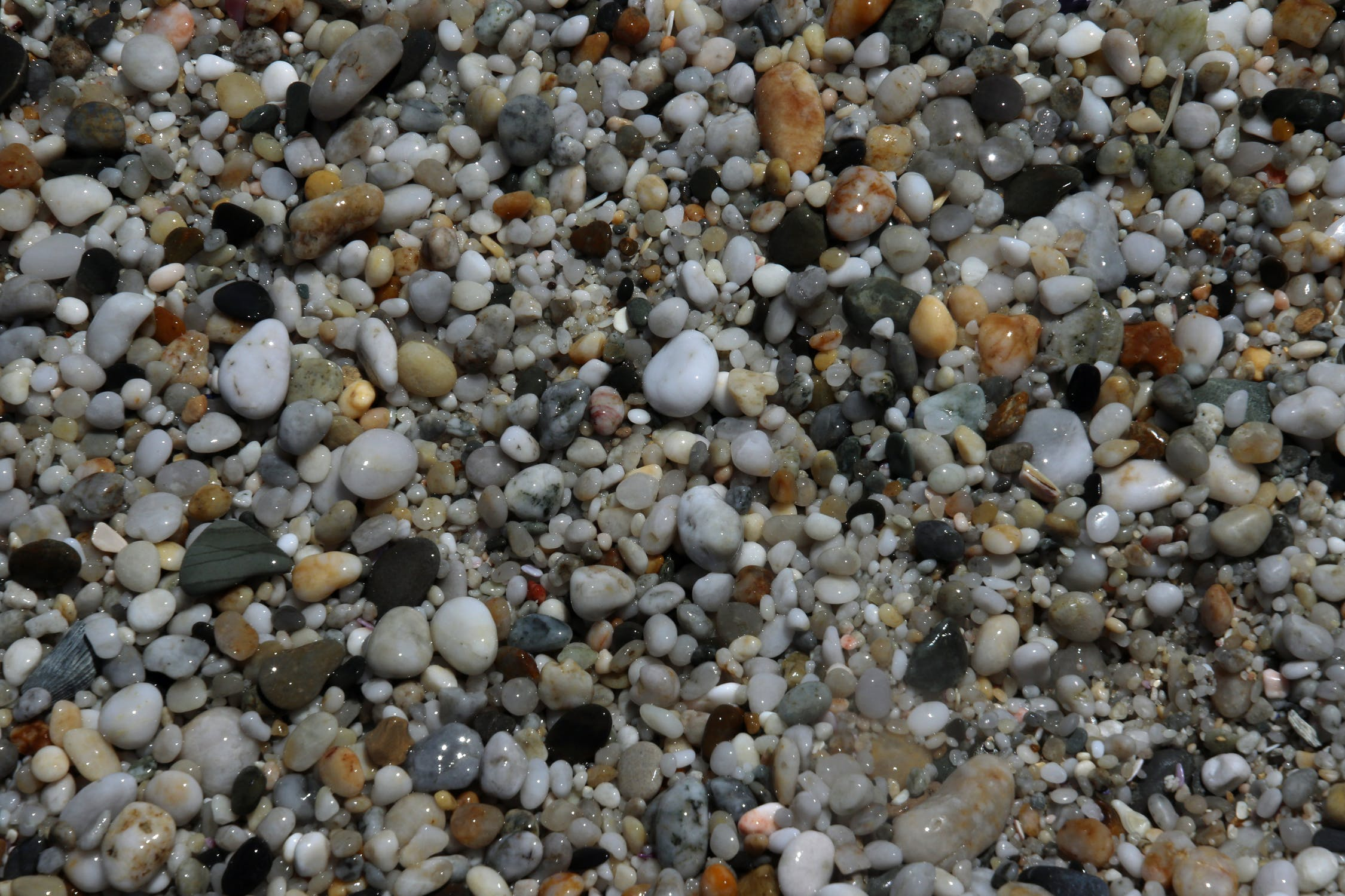 Wet stones on the beach photo