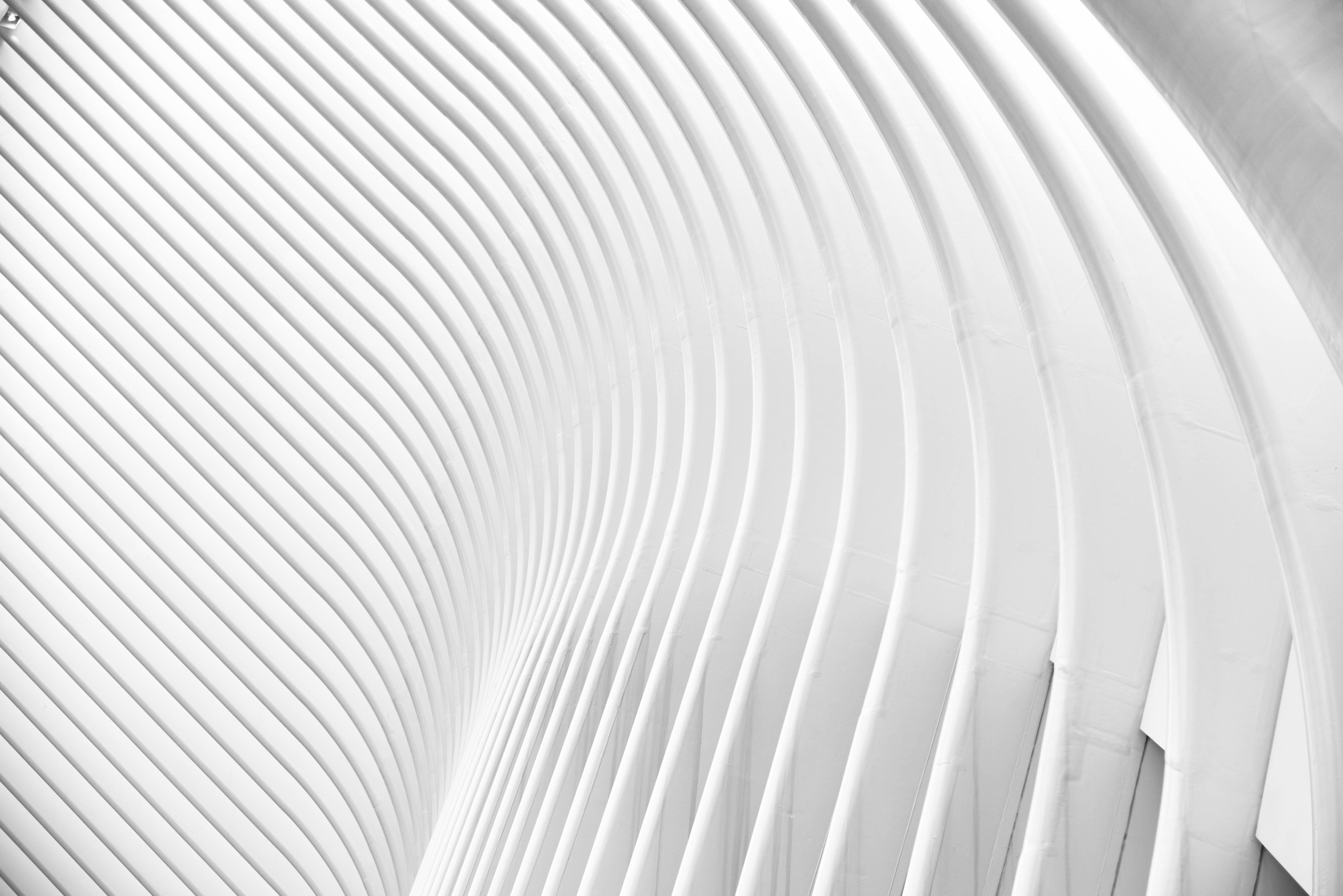 White Photos · Pexels · Free Stock Photos