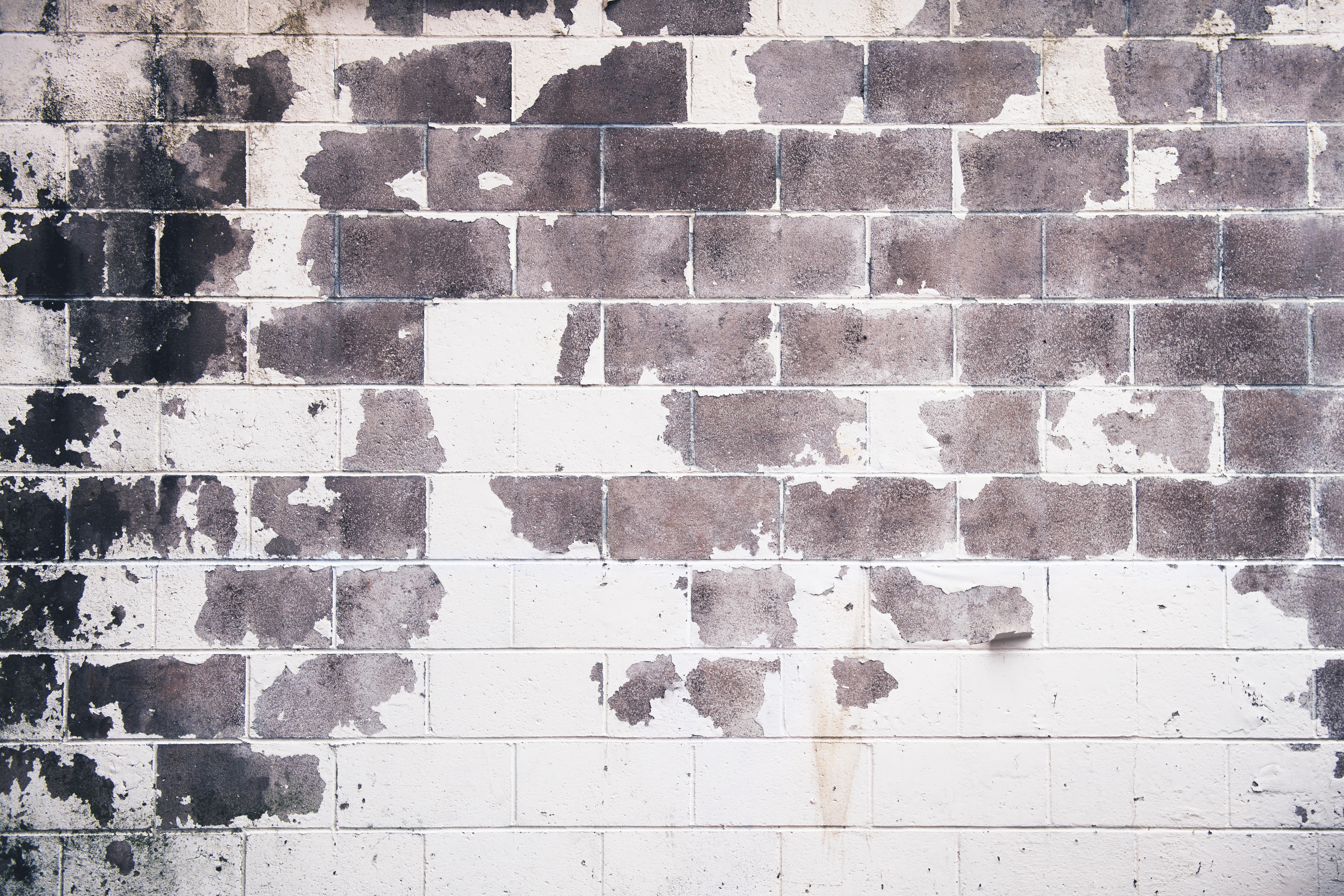 White and gray concrete brick wall photo