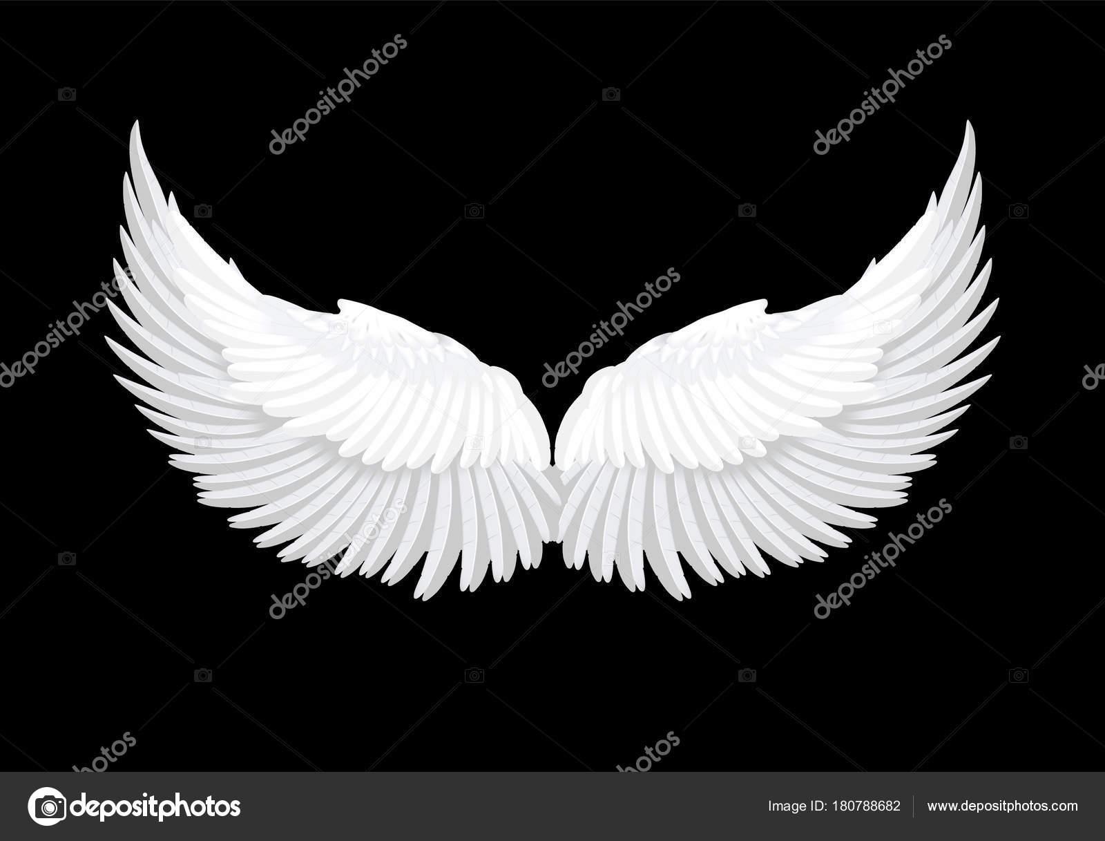 Vector realistic white angel wings — Stock Vector © IrinaBelokrylova ...