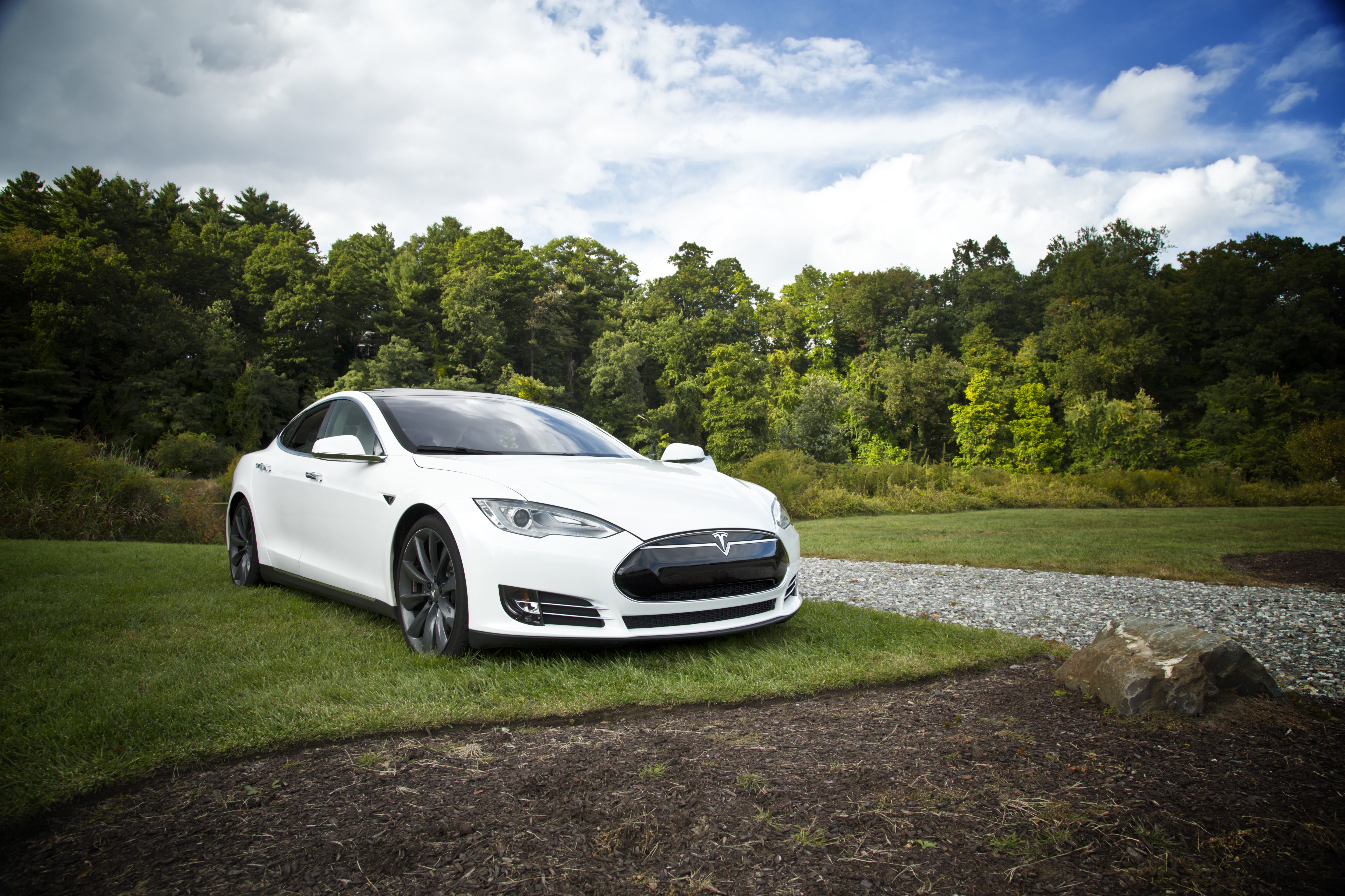 White beauty, Beauty, Car, Green, Nature, HQ Photo