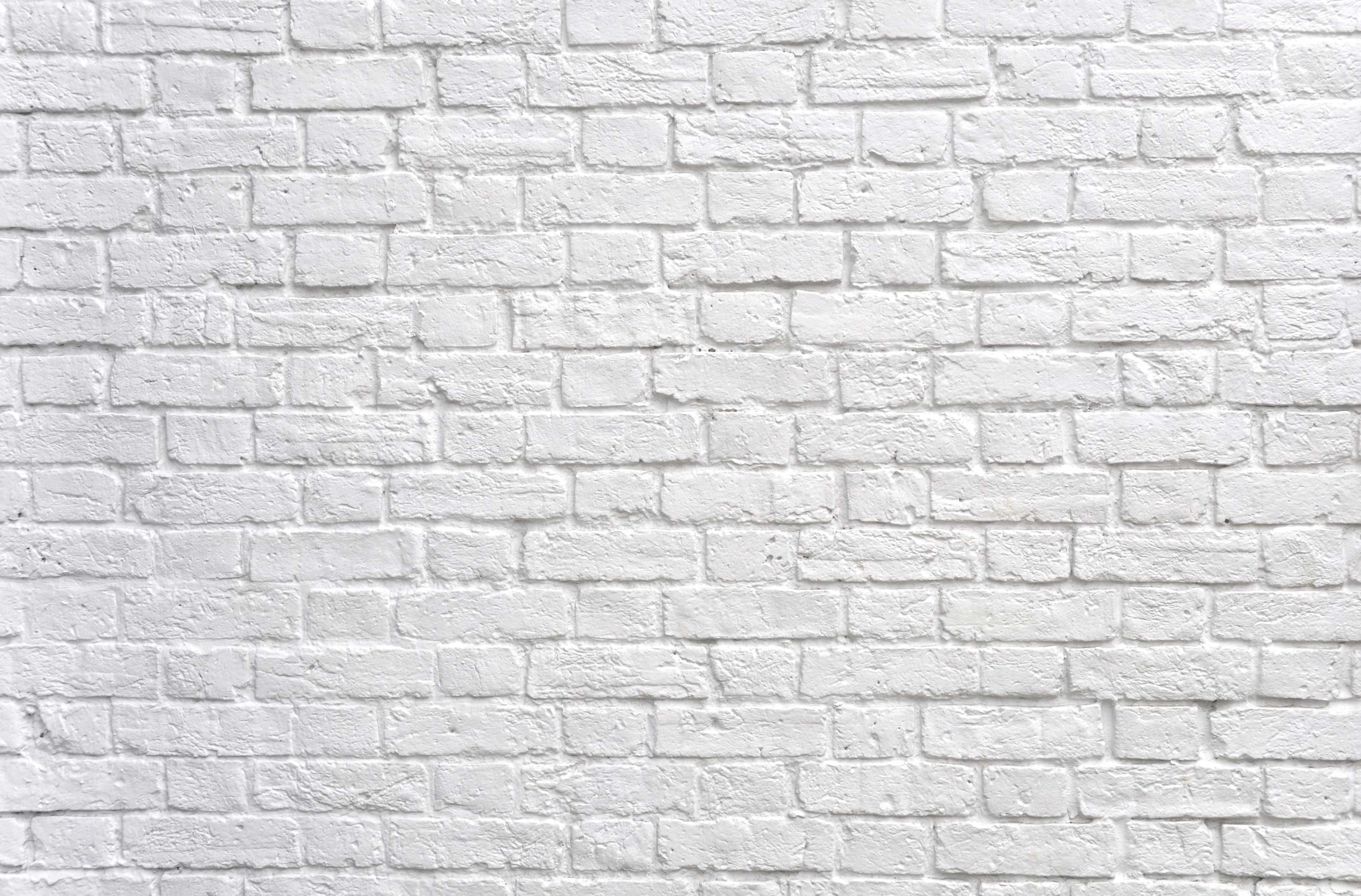 Brick Vector Picture Brick Veneers: Free Photo: White Brick Wall