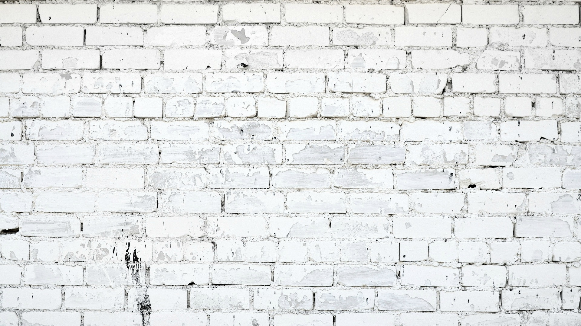 white-brick-wall-background | CAST