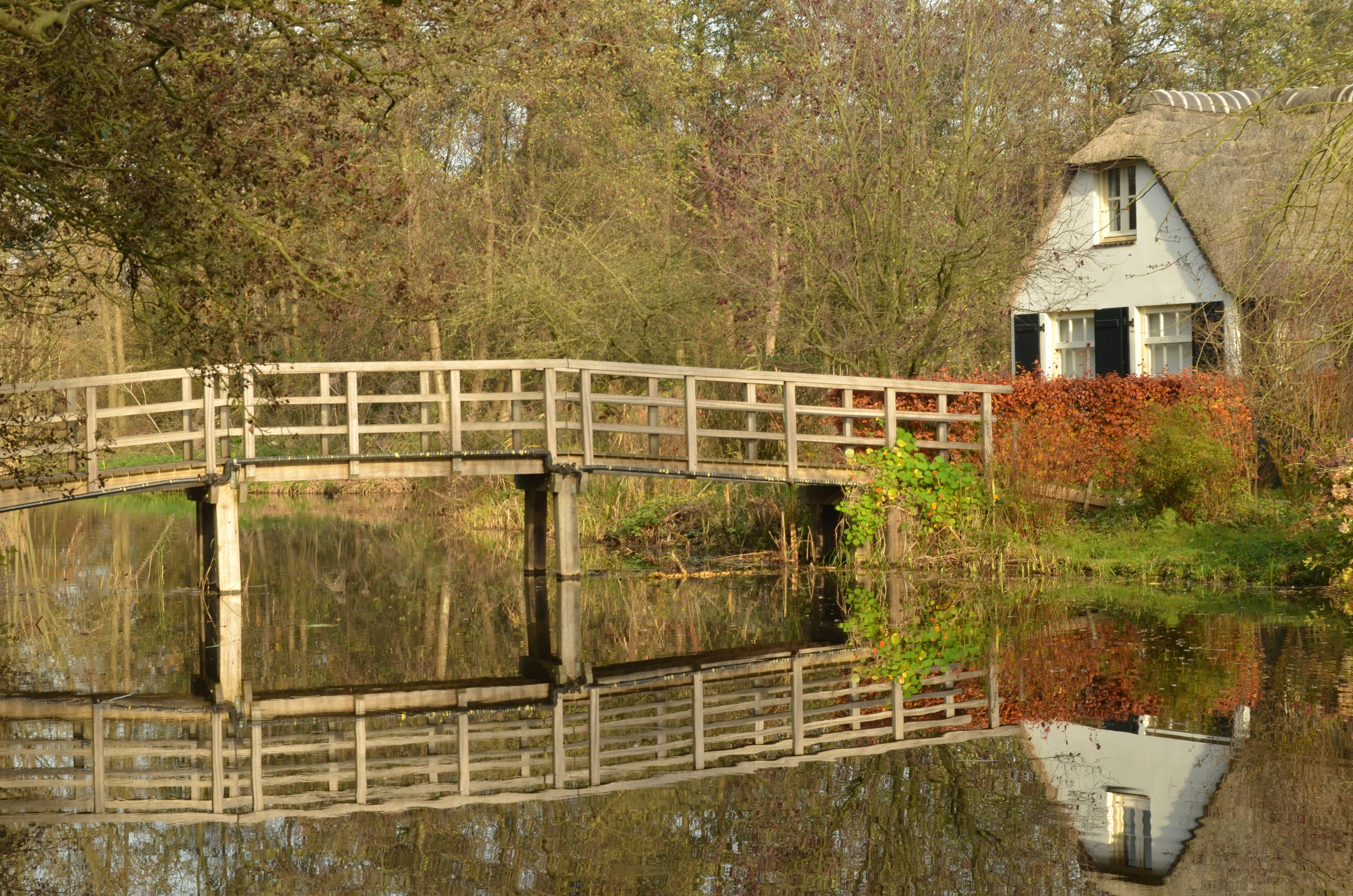 White Bridge over Body of Water Near House and Trees, Architecture, Outdoors, Wooden, Water, HQ Photo