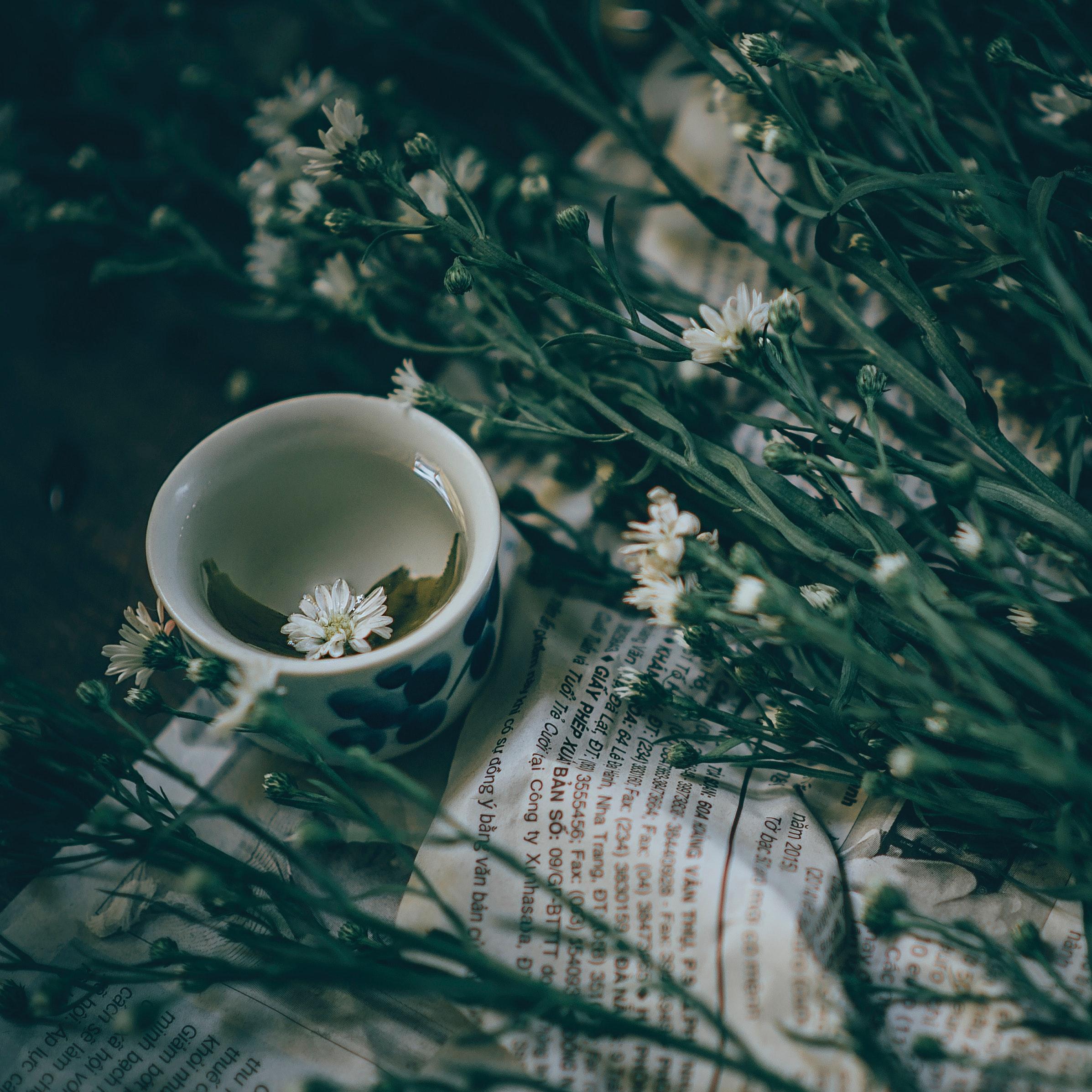 White ceramic mug beside white petal flower photo