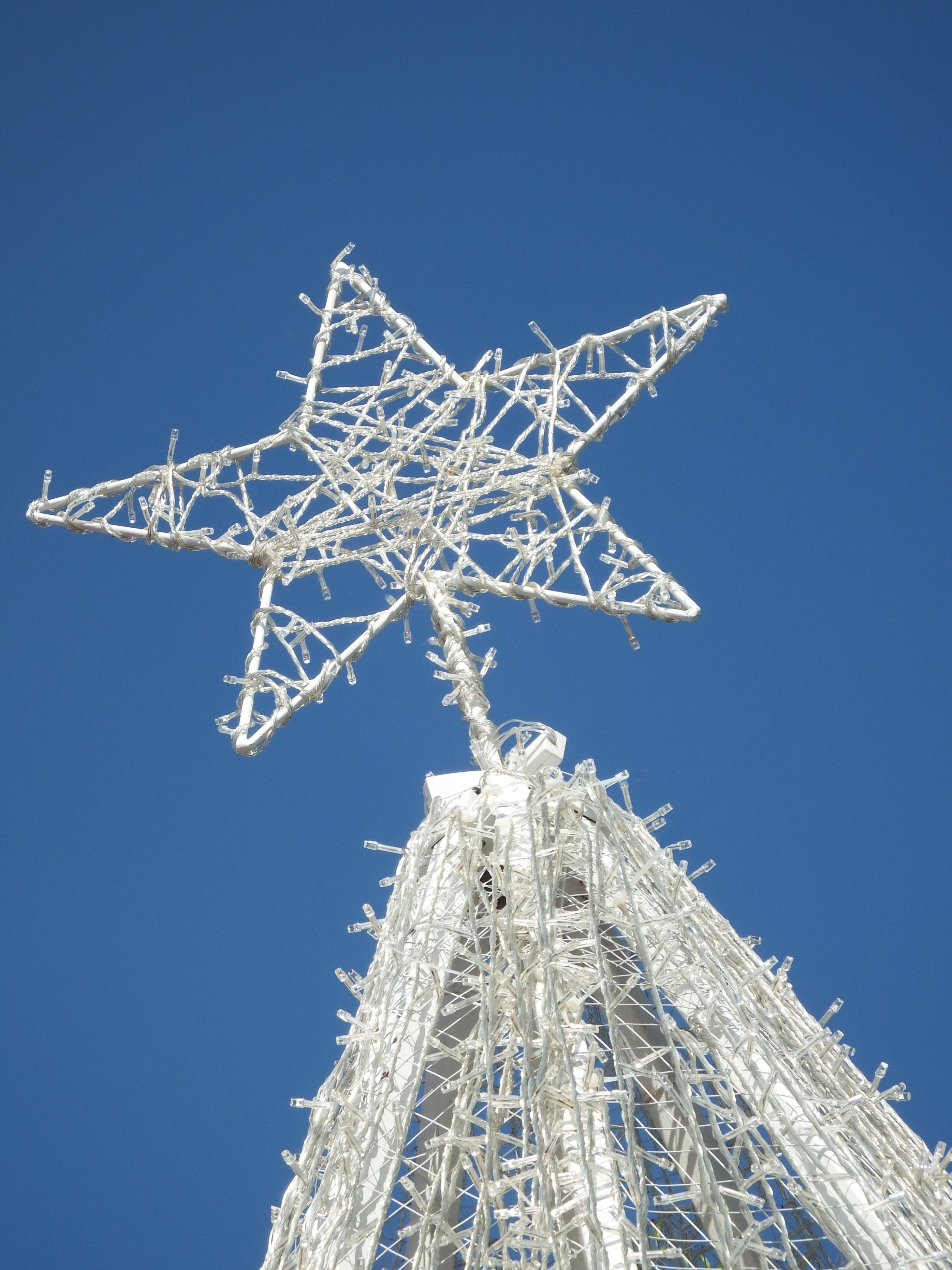 White Christmas Tree Star, Blue, Christmas, Decoration, Festive, HQ Photo