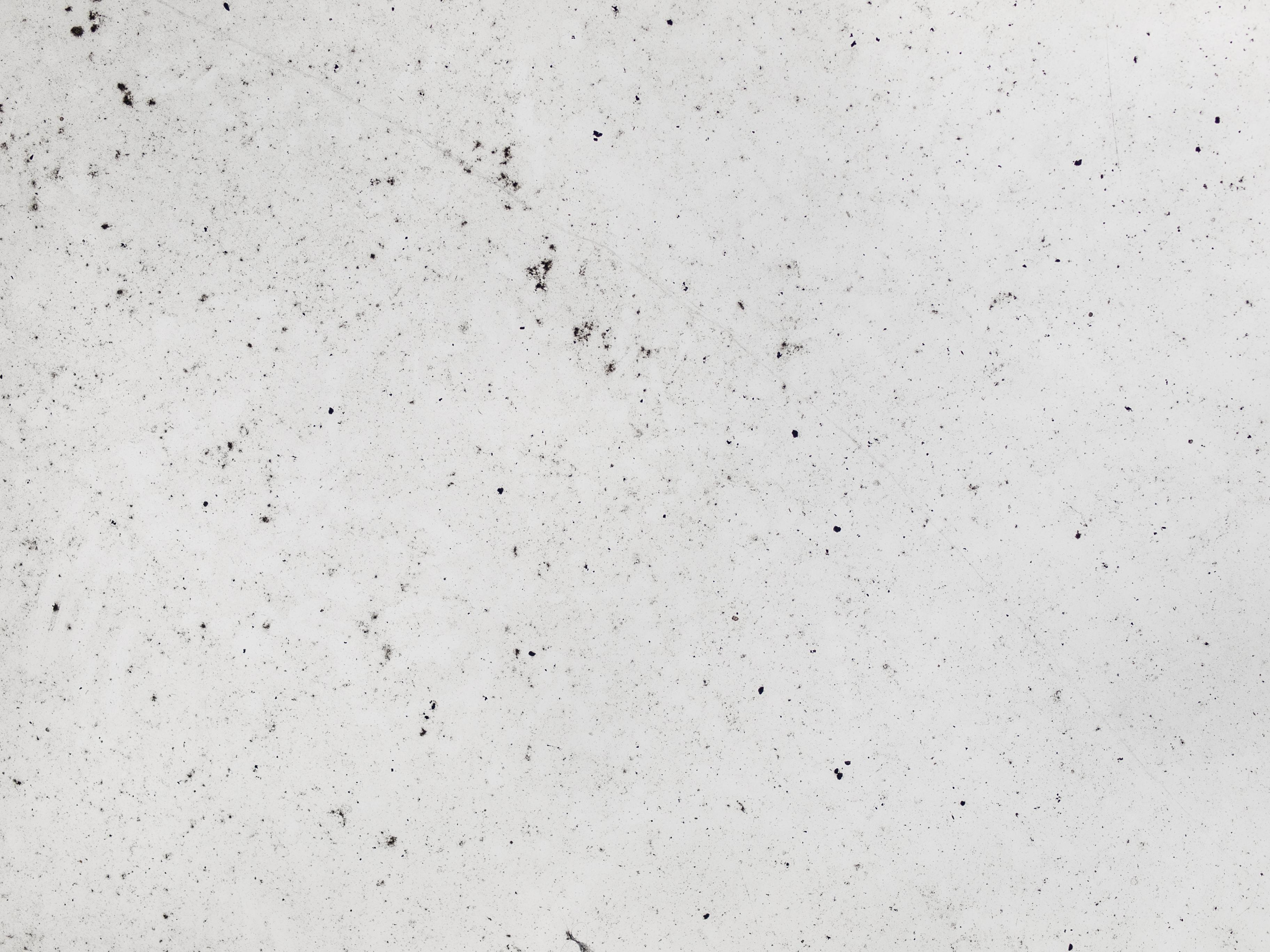 Free Photo White Concrete Texture