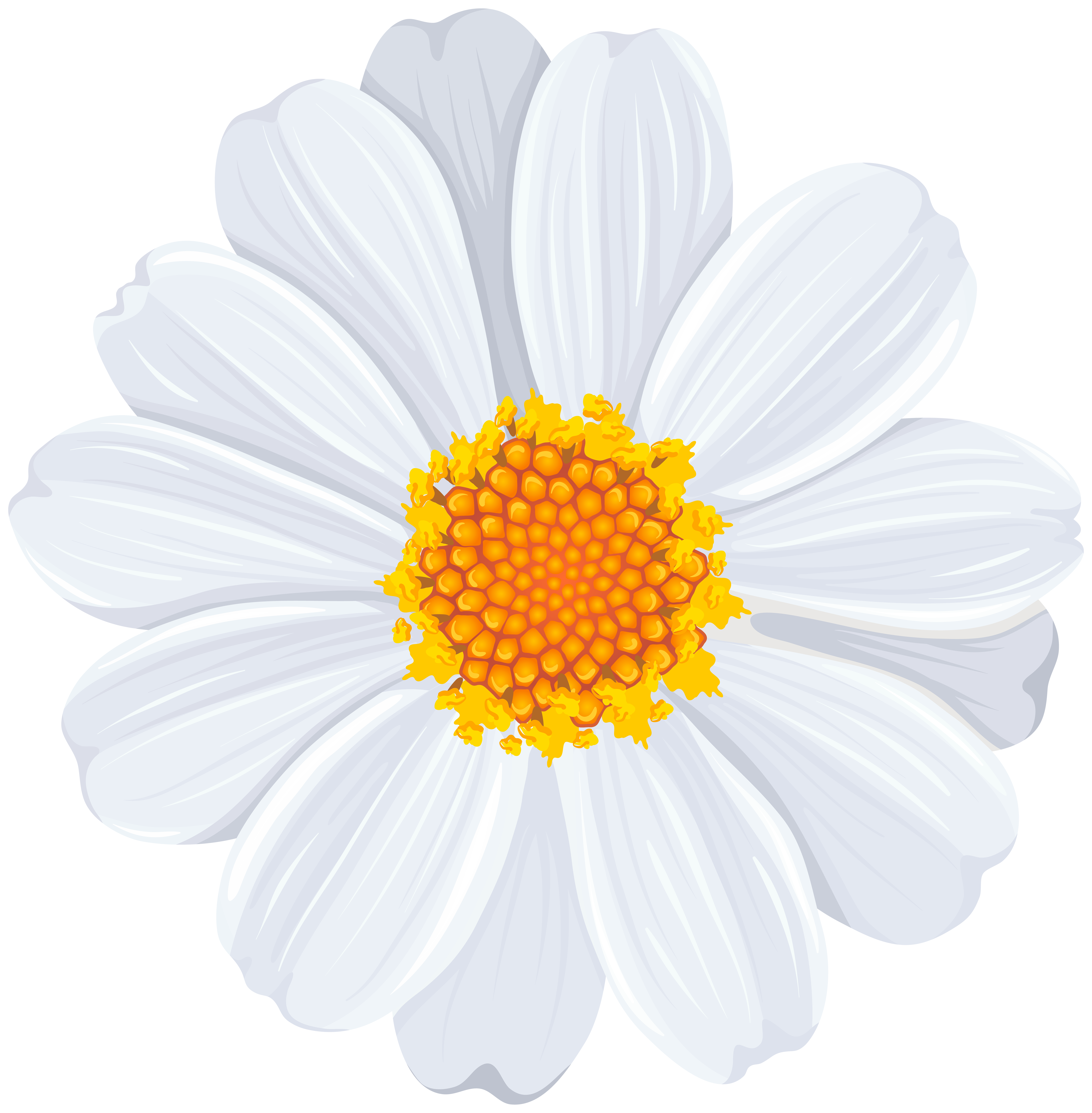 White Daisy PNG Transparent Clip Art Image | Gallery Yopriceville ...