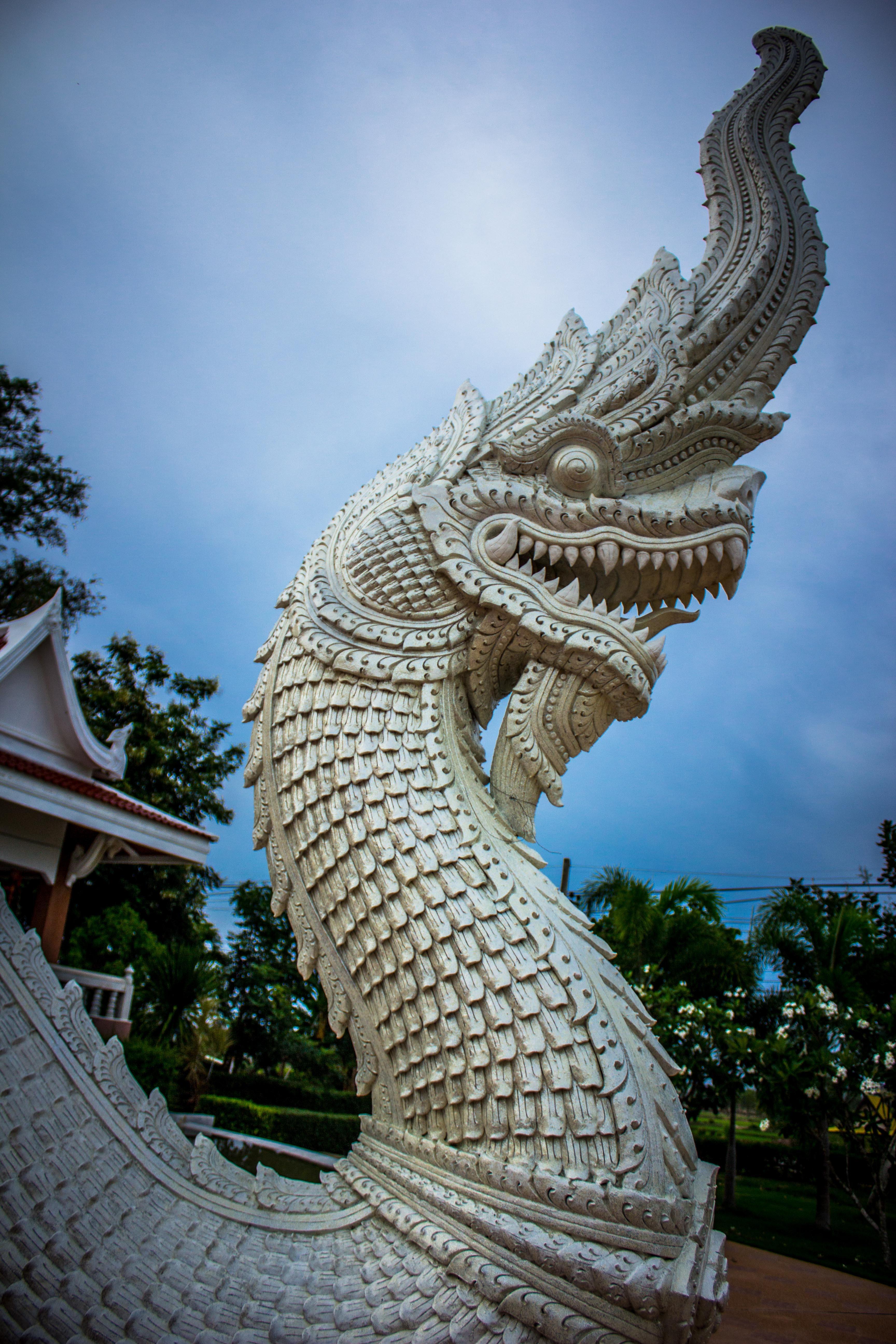 White Dragon Statue, Art, Outdoors, White, Trees, HQ Photo