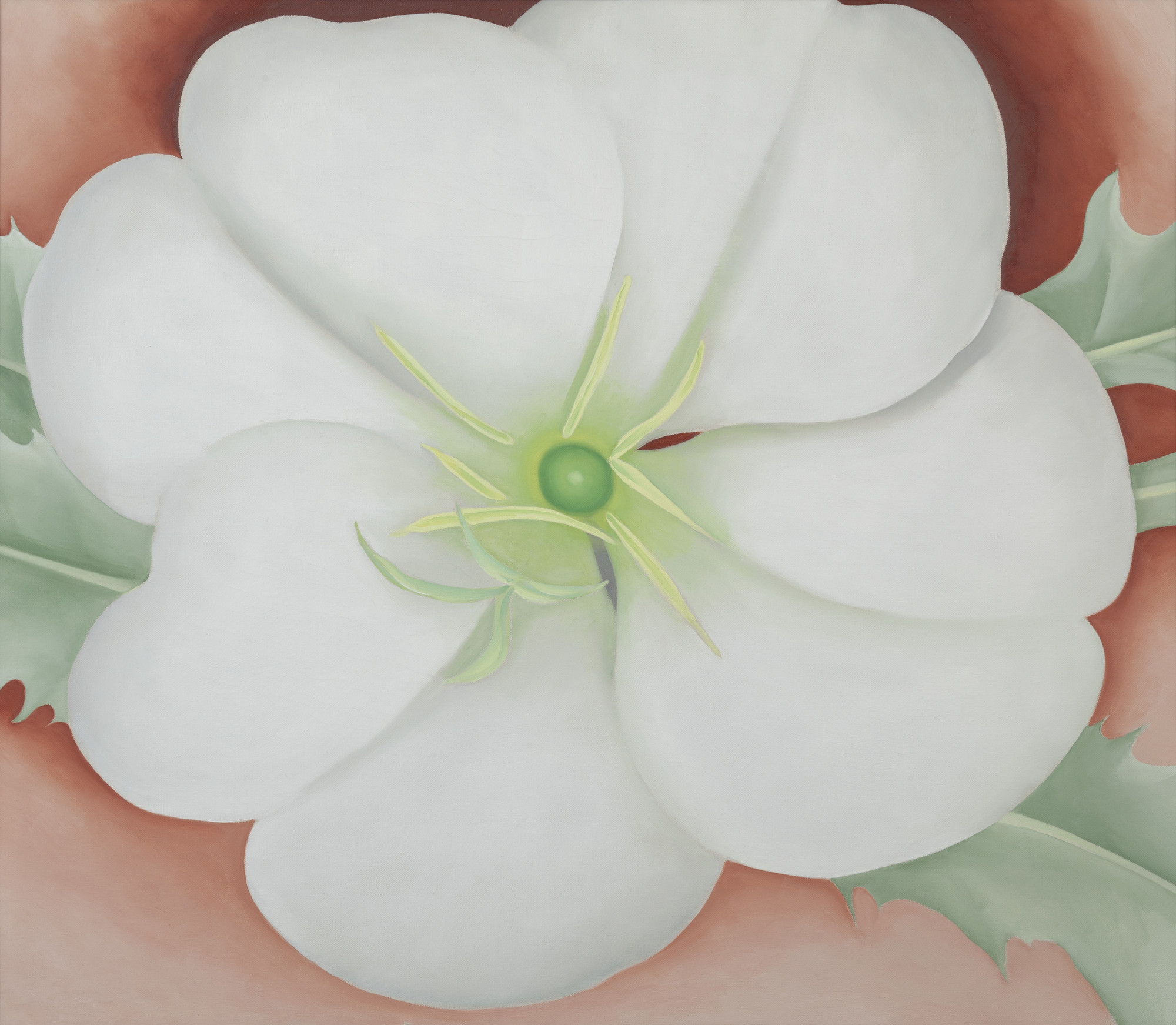 Georgia O'Keeffe | White Flower on Red Earth, No.1 | Newark Museum ...