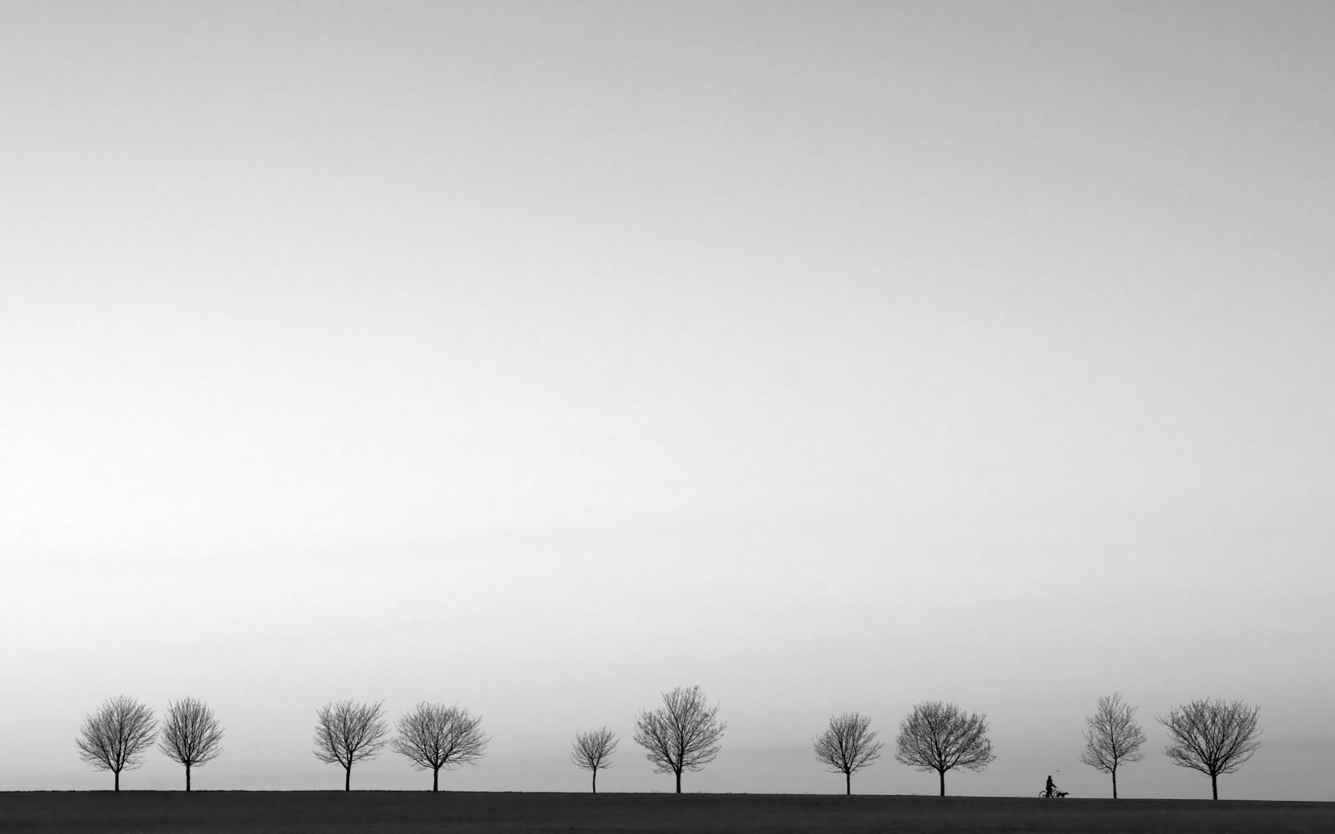 Landscape Trees Black And White Jpg 1920 C3 A3 C2 971200 Minimal ...
