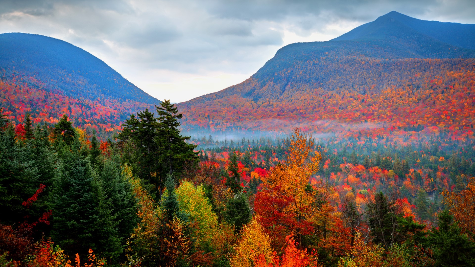 Autumn foliage fall in White Mountains National Forest, New ...
