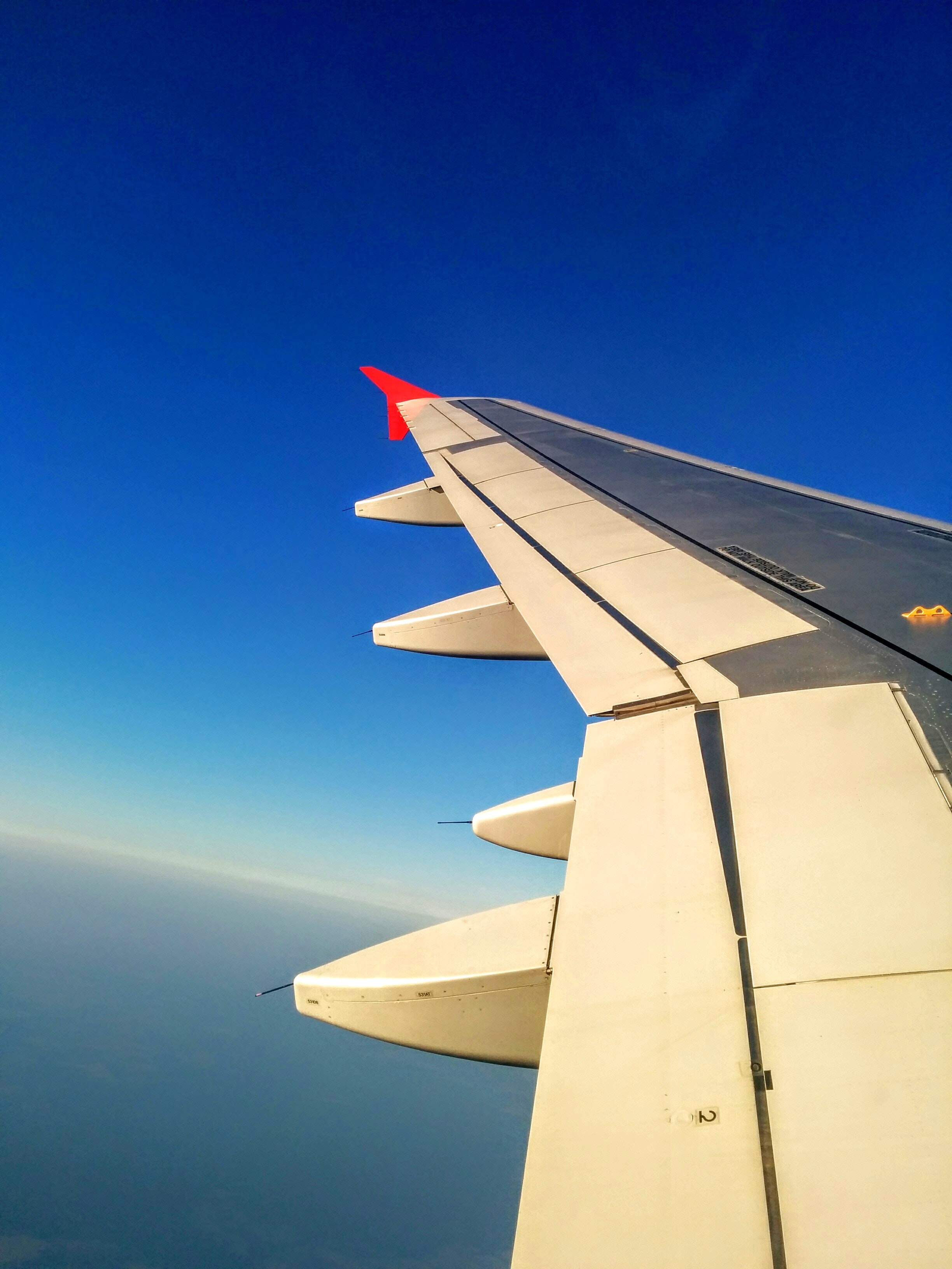 White and Black Left Plane Wing · Free Stock Photo