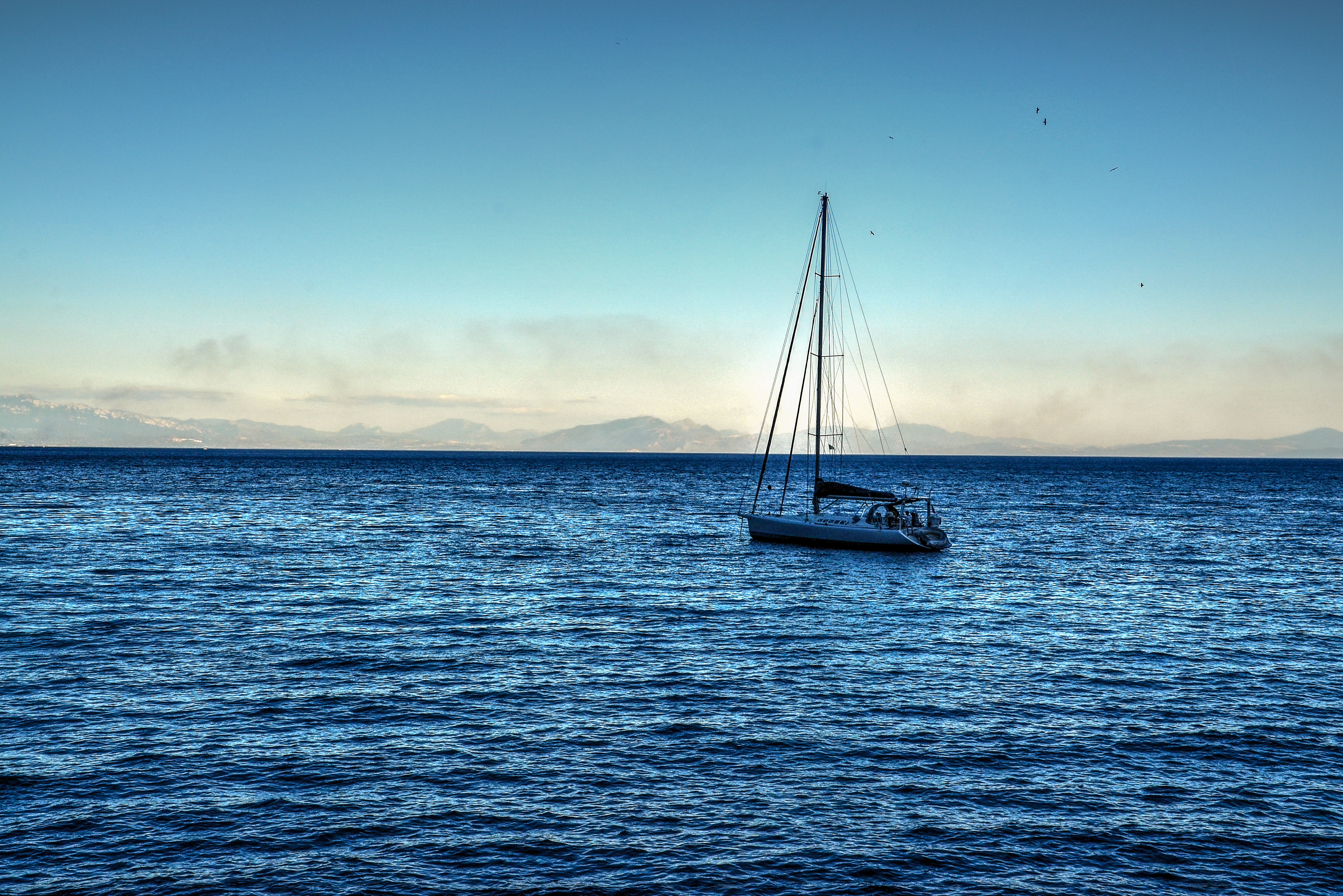White sailing boat on bodies of water photo