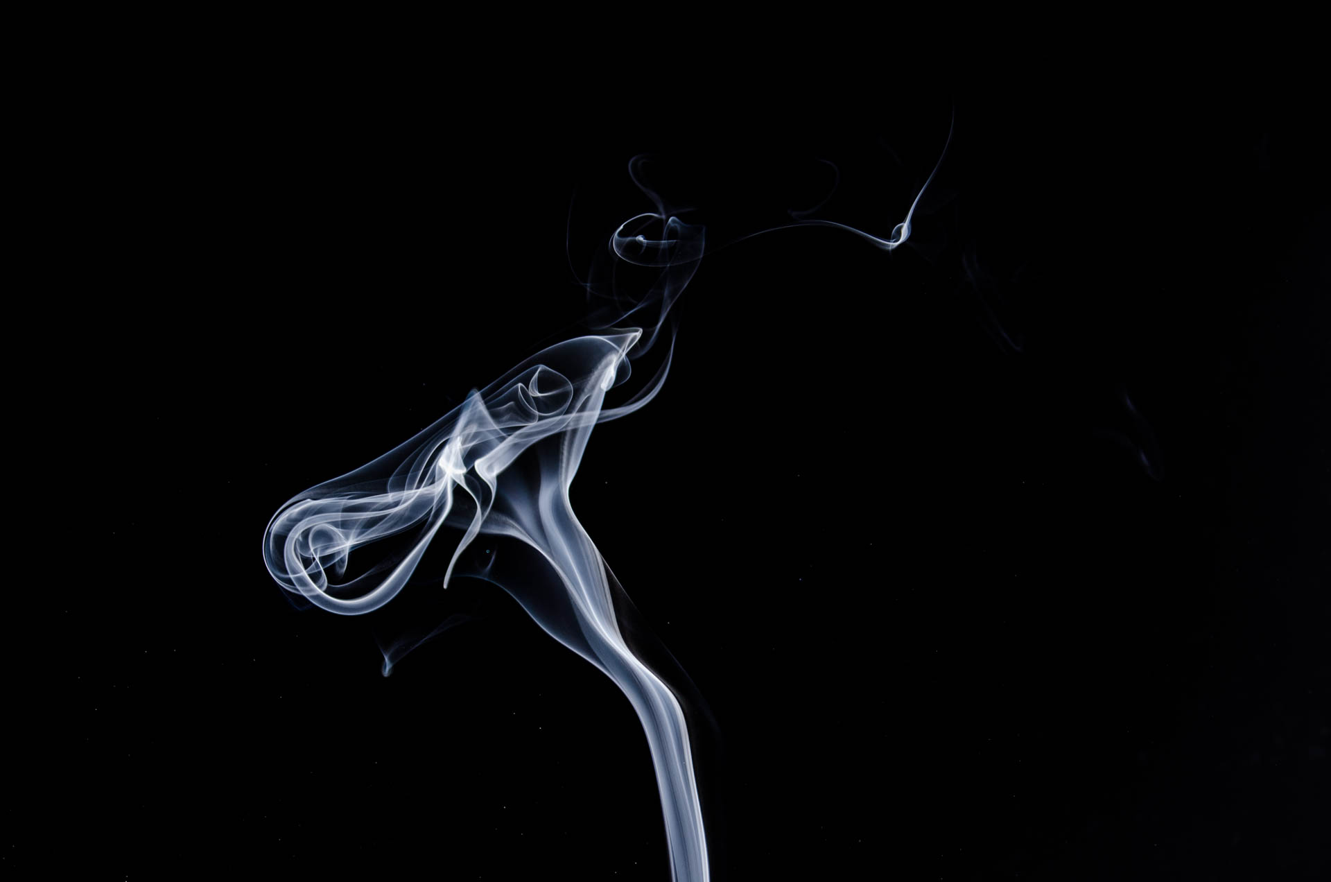 White smoke photo