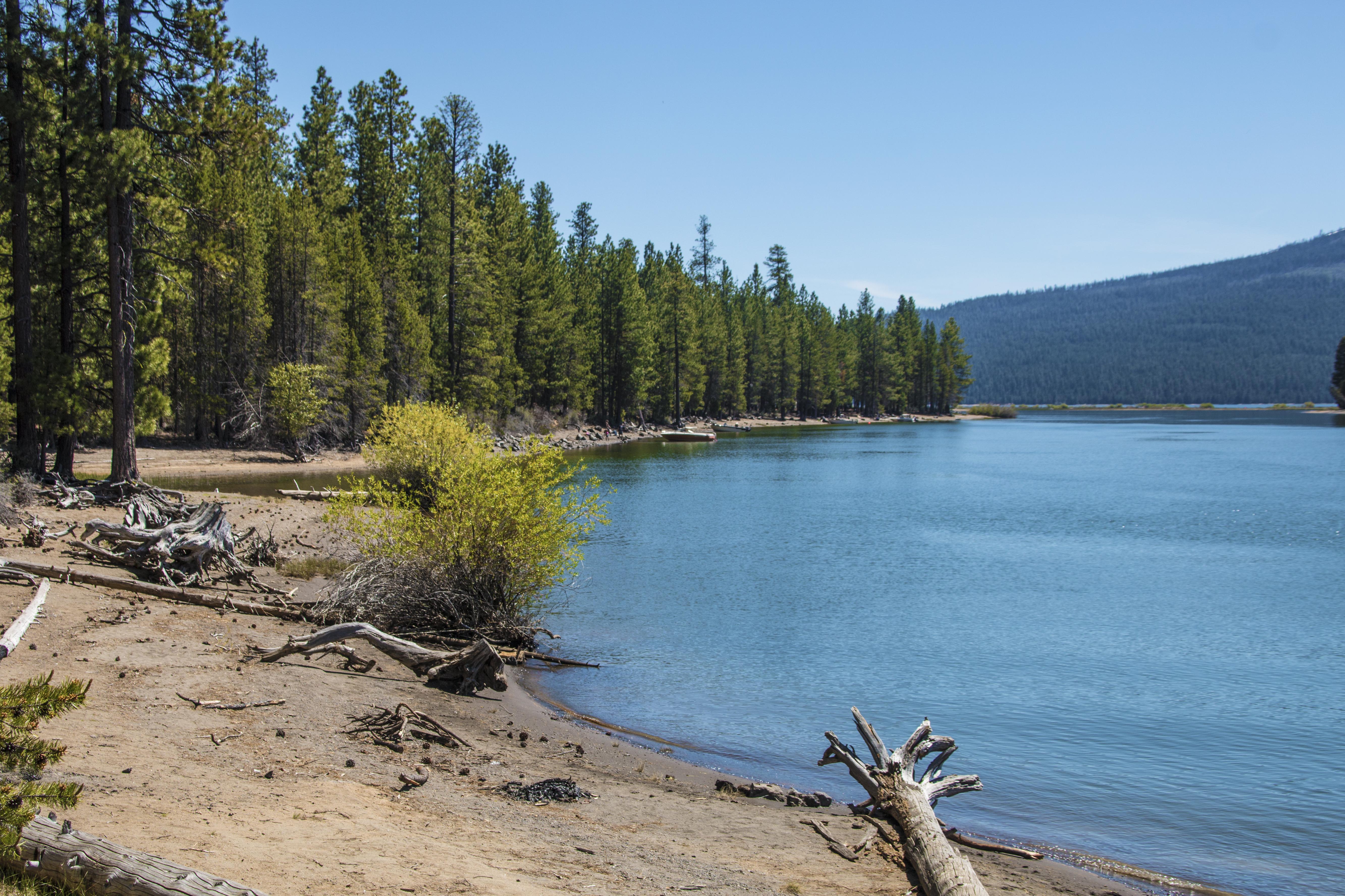 Wickiup Reservoir, Oregon, Bay, Forest, Lake, Landscape, HQ Photo