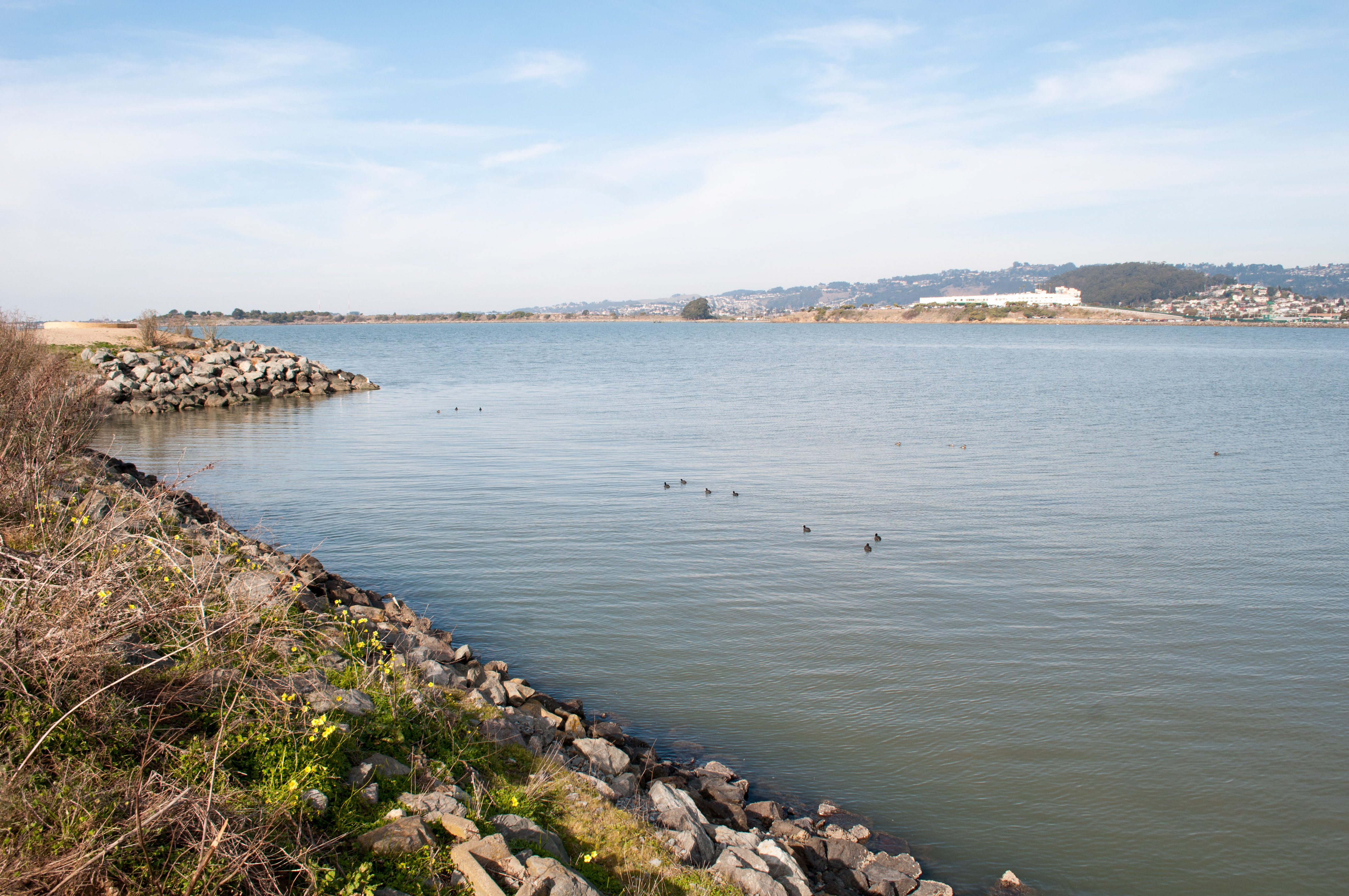 Wide view of bay photo