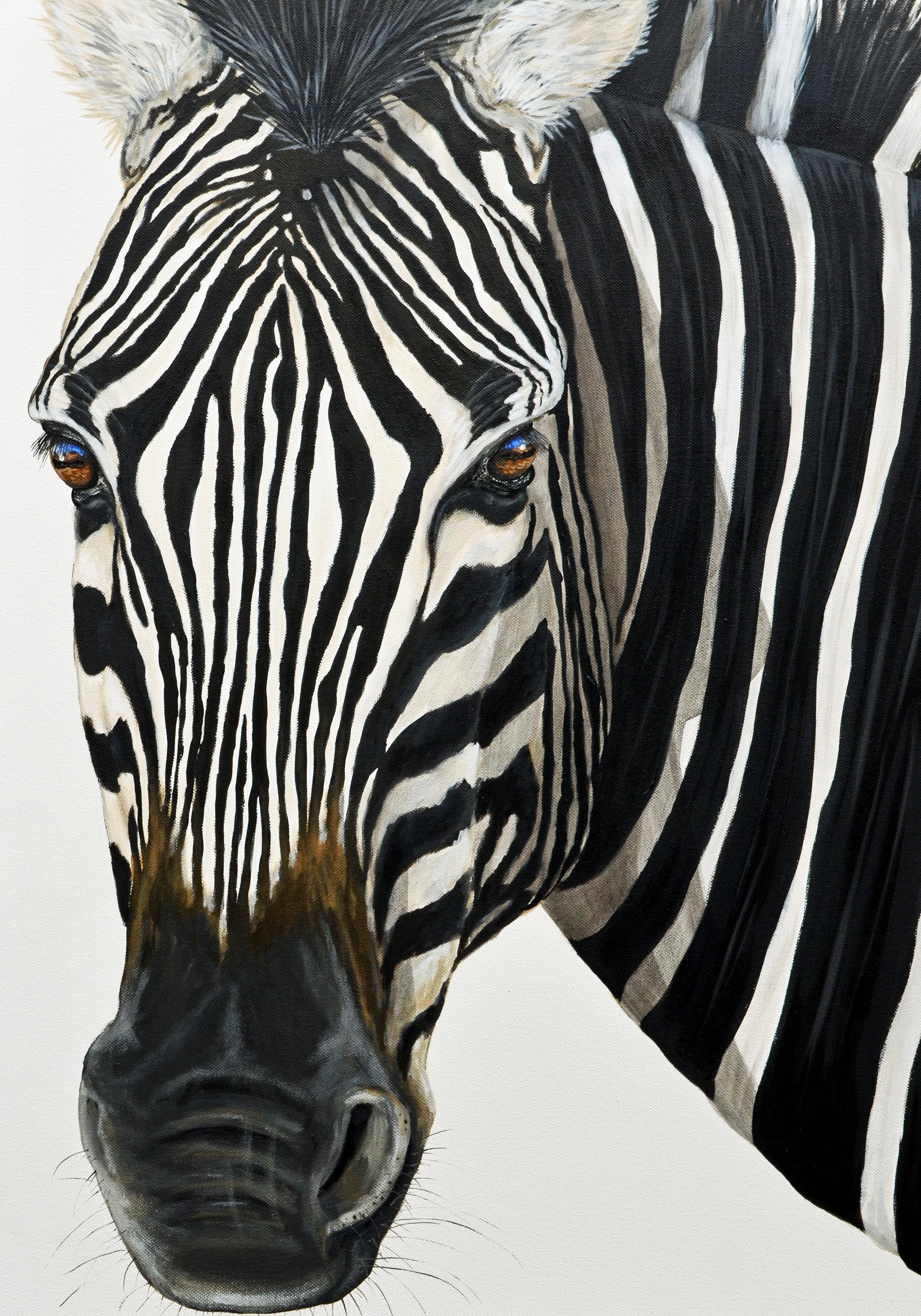 Zebra Art.... by Fiona Groom