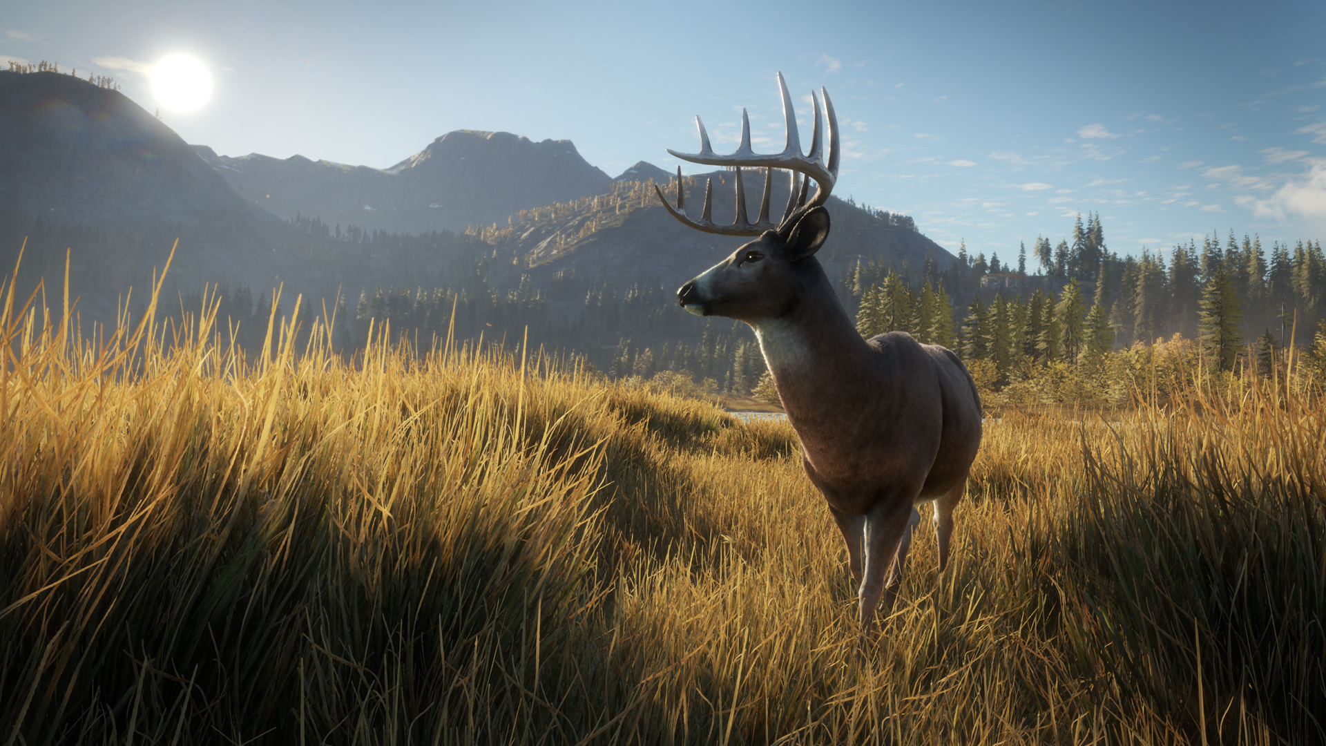 theHunter: Call of the Wild Review – Xbox Gamer Reviews