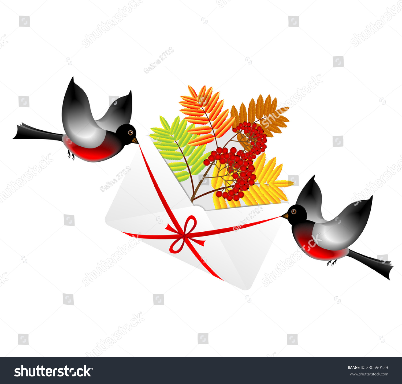 Bullfinchs Carry Envelope Branch Wild Ash Stock Vector (2018 ...
