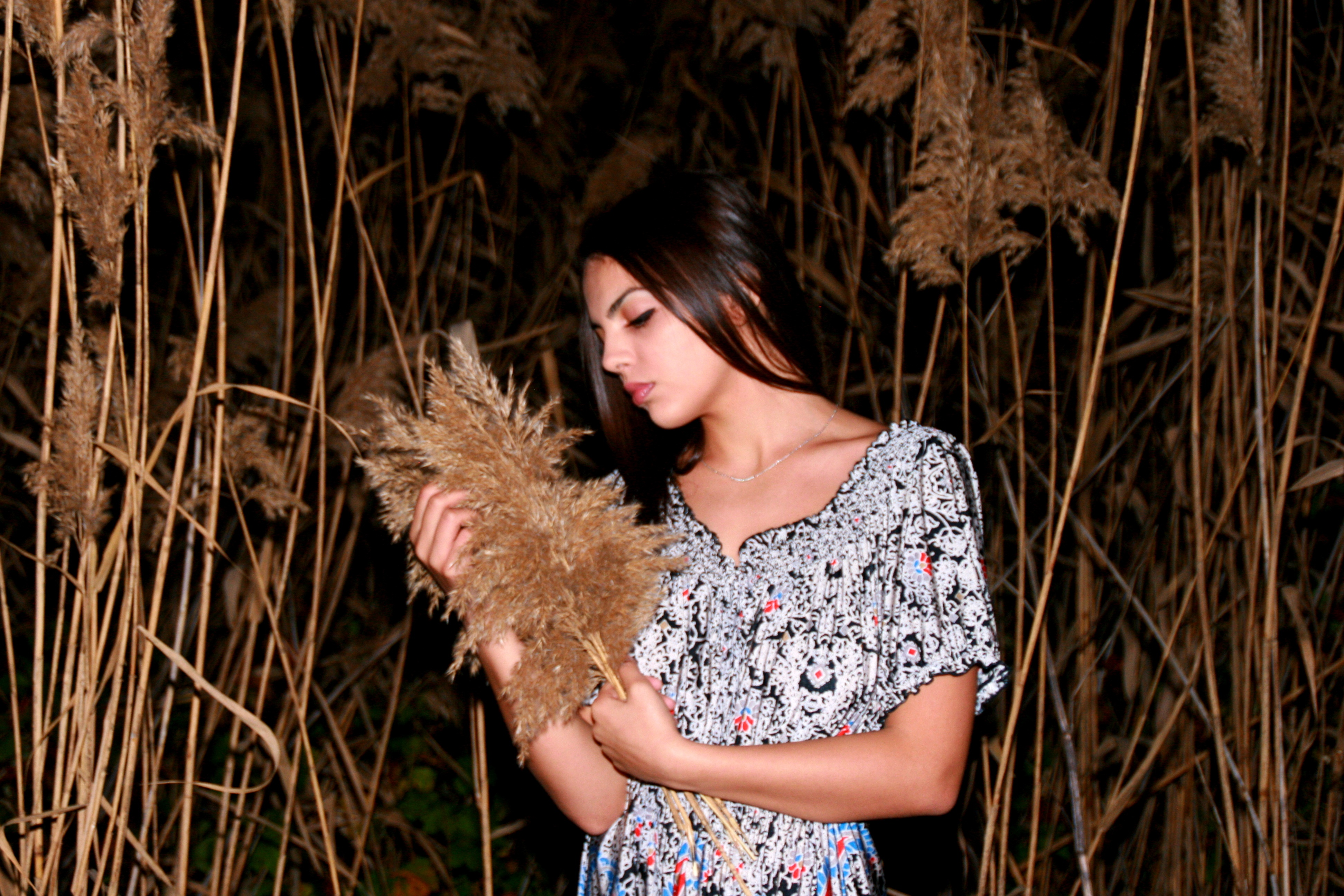 Wild Plants, Girl, Portrait, Pose, Wild, HQ Photo