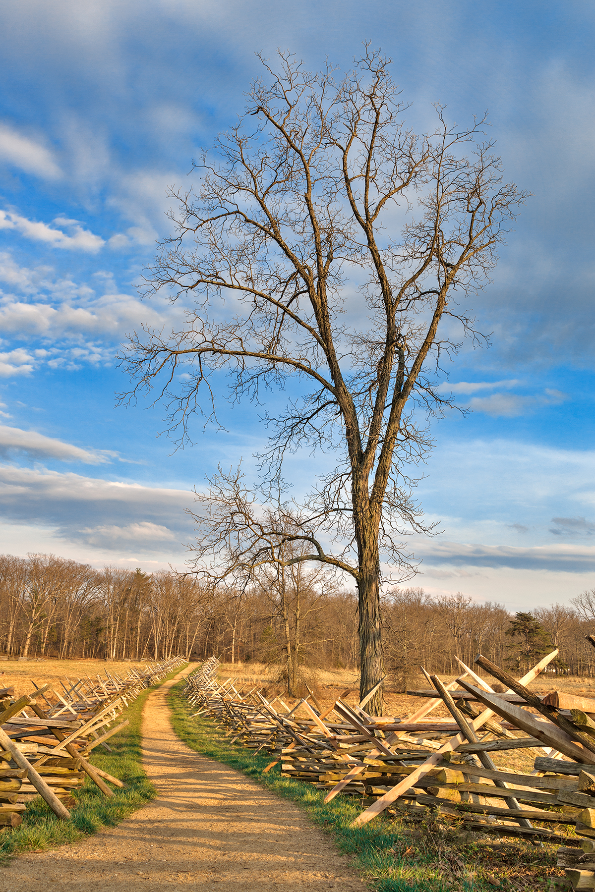 Winding Gettysburg Trail - HDR, America, Path, Scenic, Scenery, HQ Photo