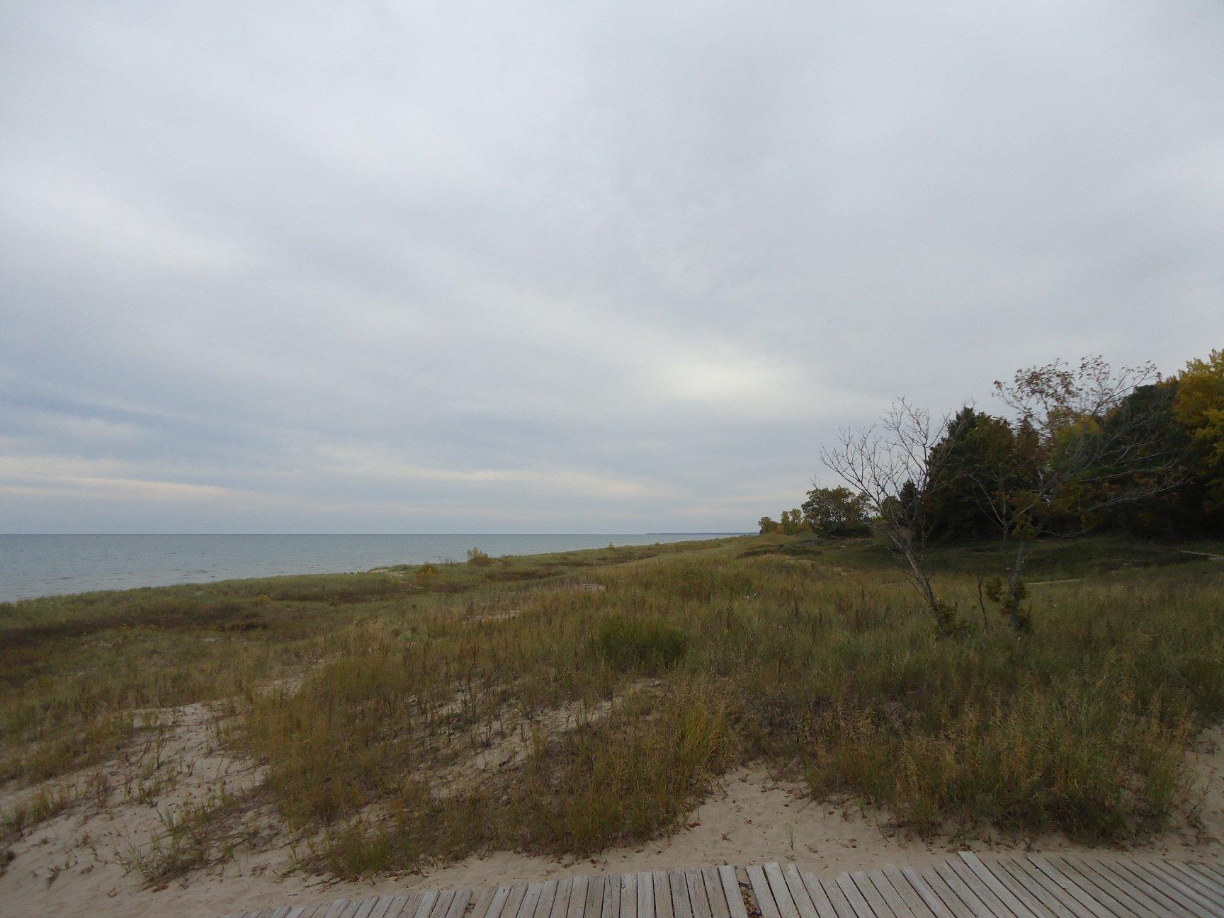 Windswept shore of lake michigan photo