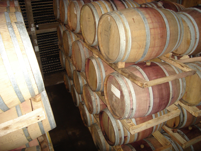 Wine barrels photo