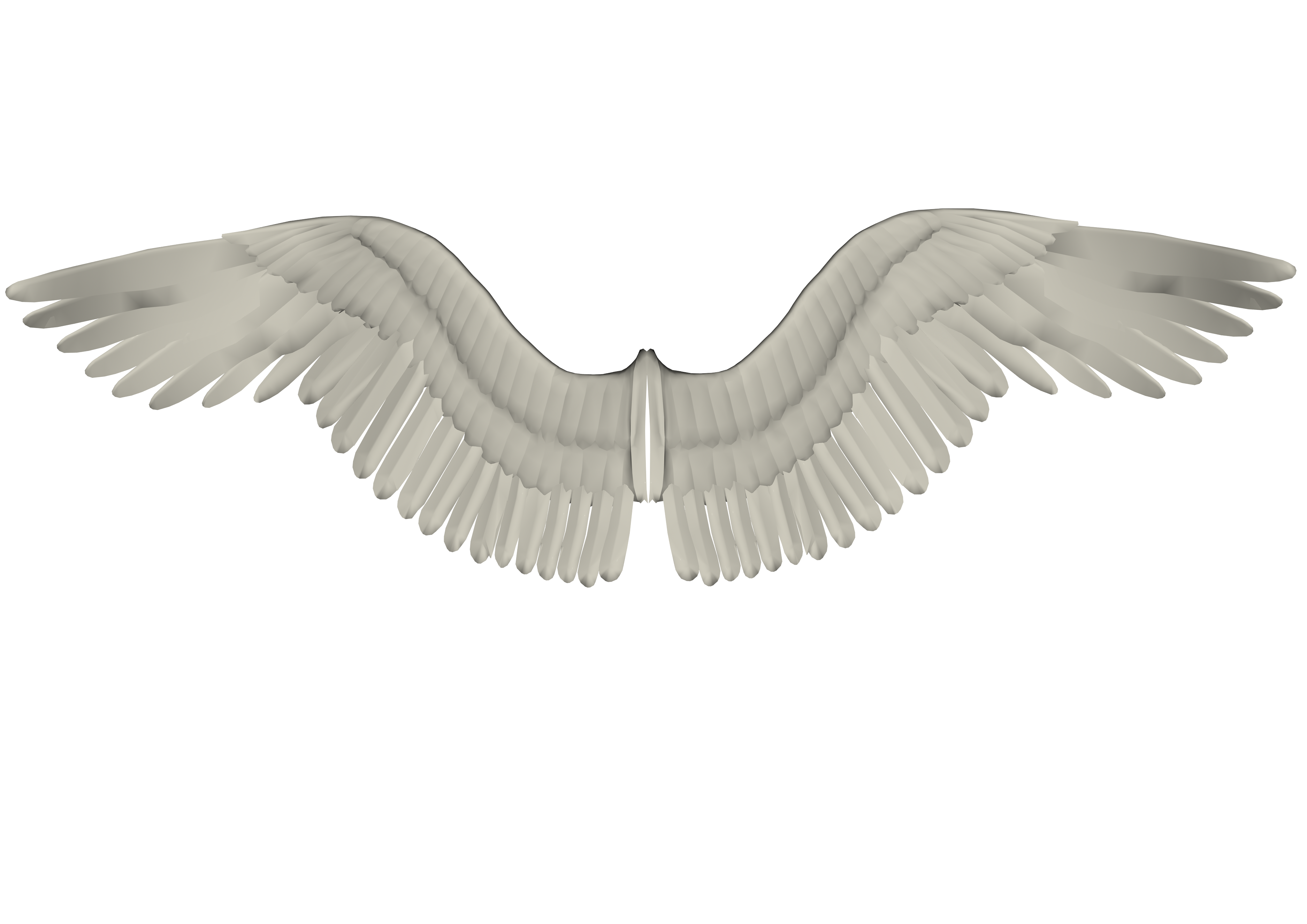 Wings 2, 3d, Feather, Render, White, HQ Photo